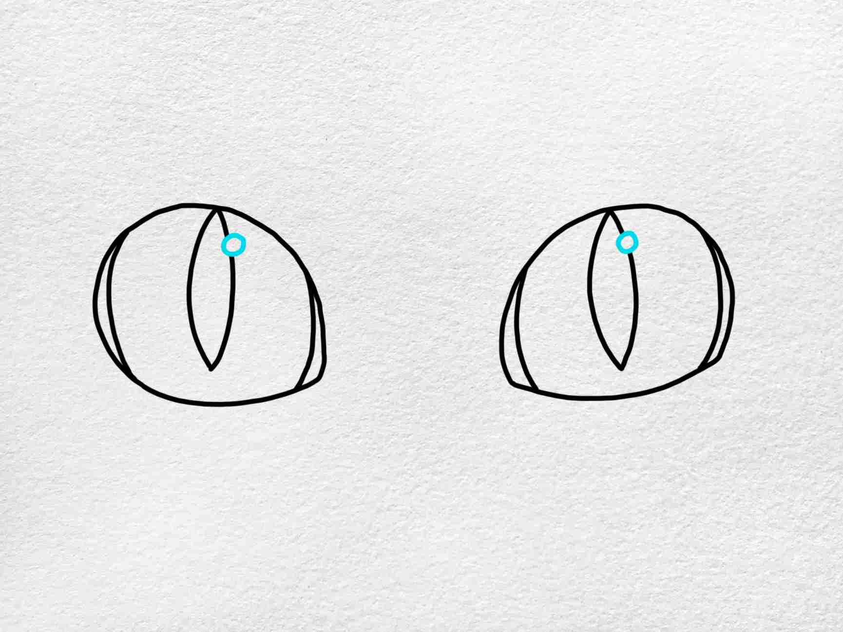 Cat Eyes Drawing: Step 5