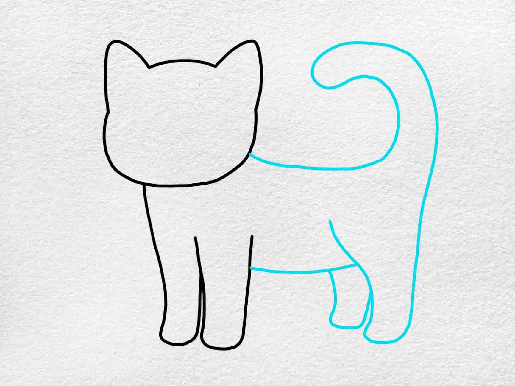 Cute Kitty Drawing: Step 3