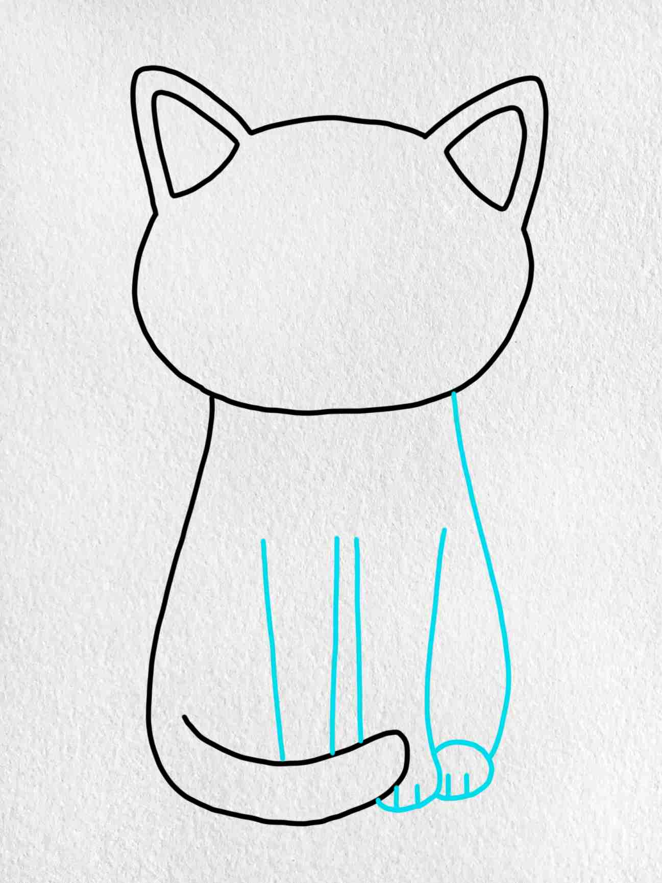 Easy Cat Drawing: Step 4