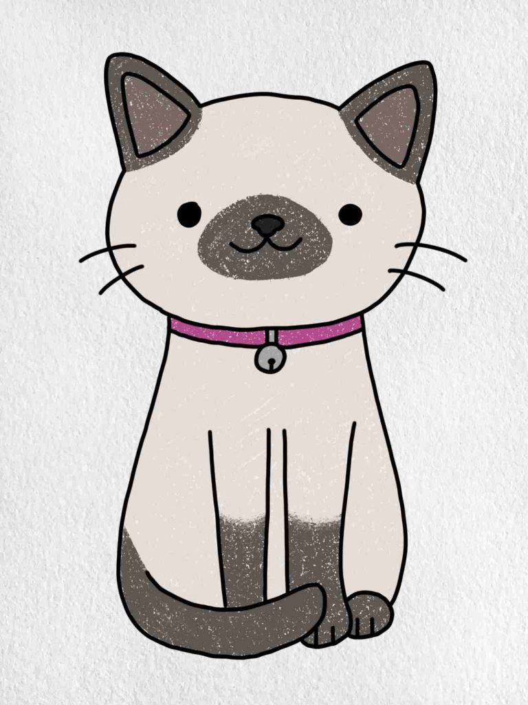 Easy Cat Drawing: Step 6