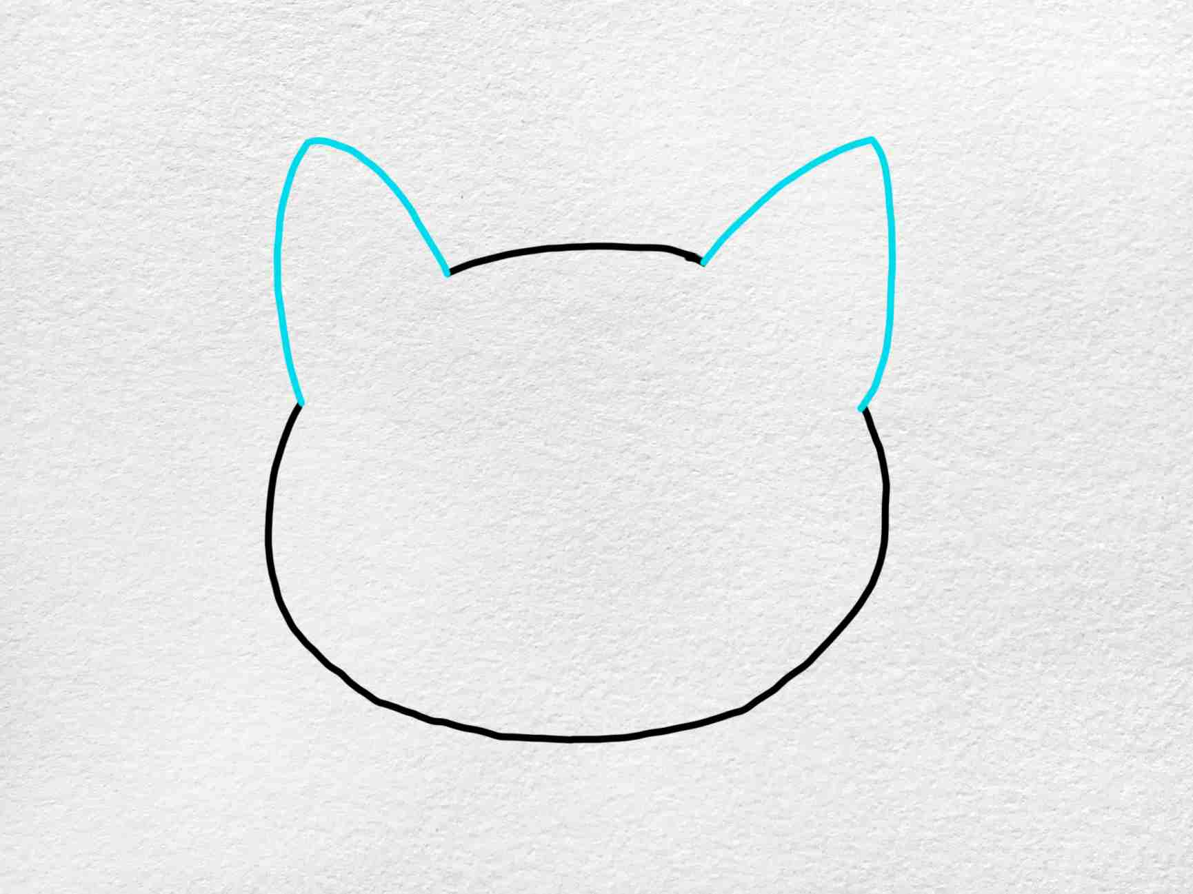 Easy Cat Face Drawing: Step 2