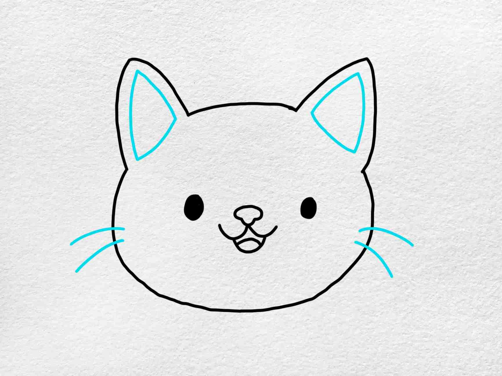 Easy Cat Face Drawing: Step 4