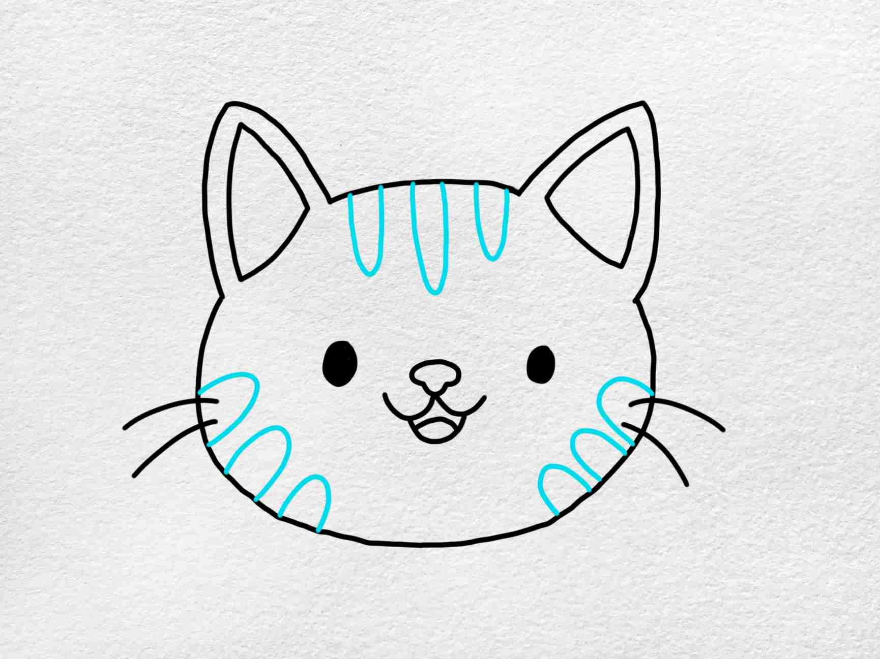 Easy Cat Face Drawing: Step 5