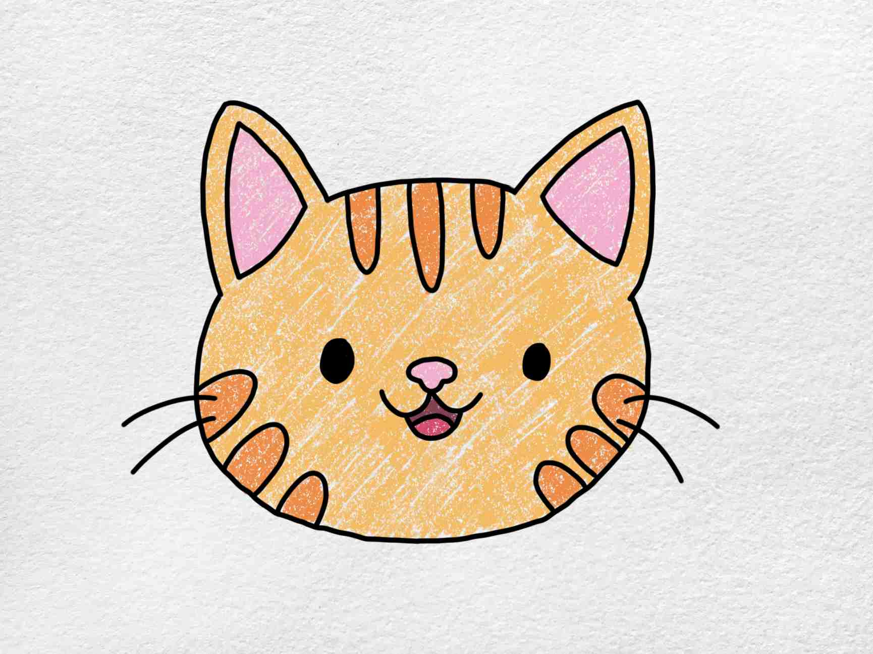 Easy Cat Face Drawing: Step 6
