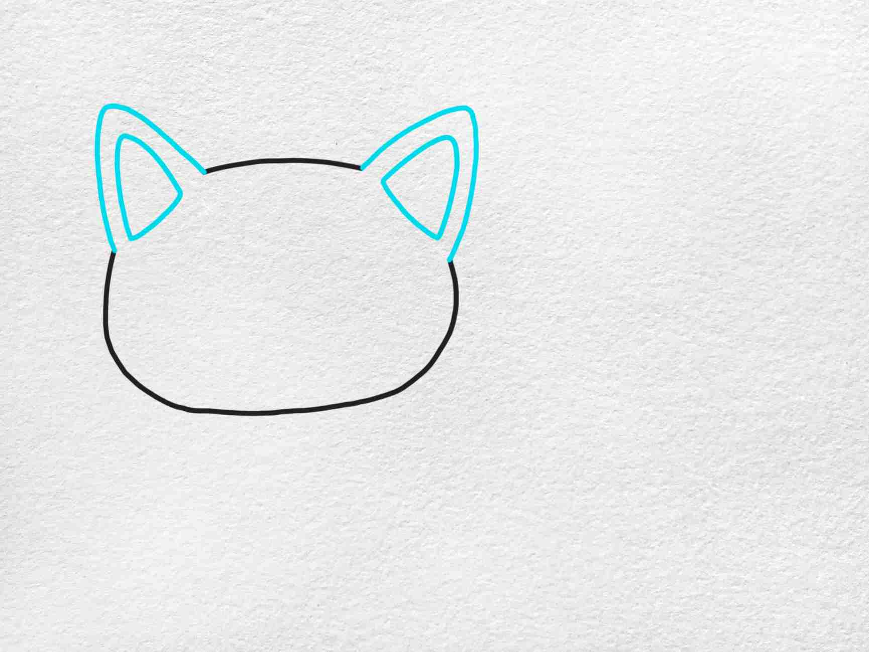 Fat Cat Drawing: Step 2