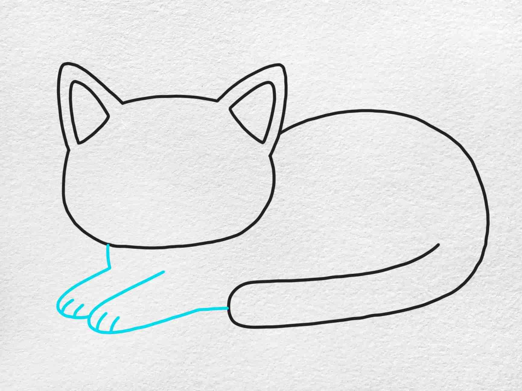 Fat Cat Drawing: Step 4