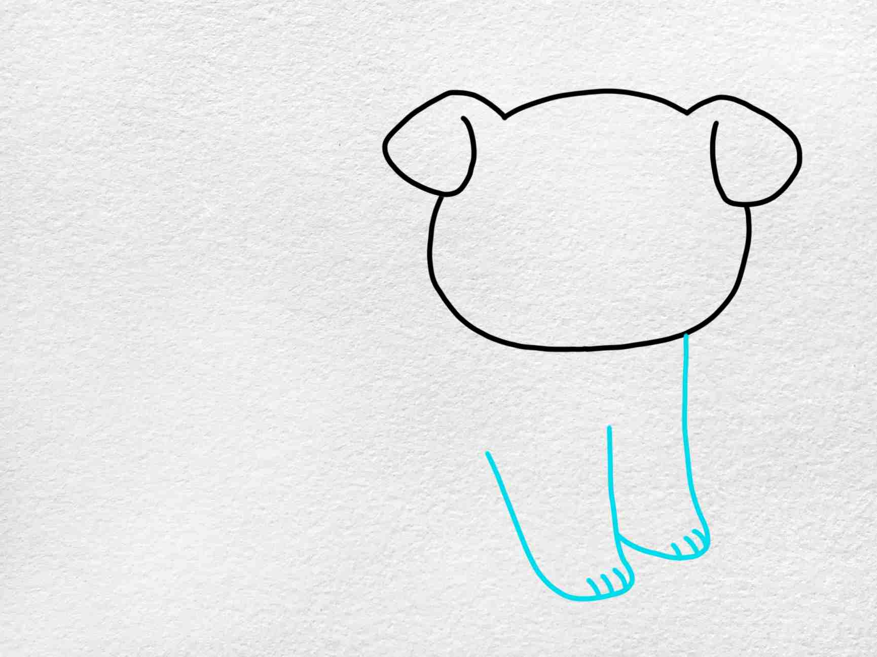 How To Draw A Bulldog: Step 3