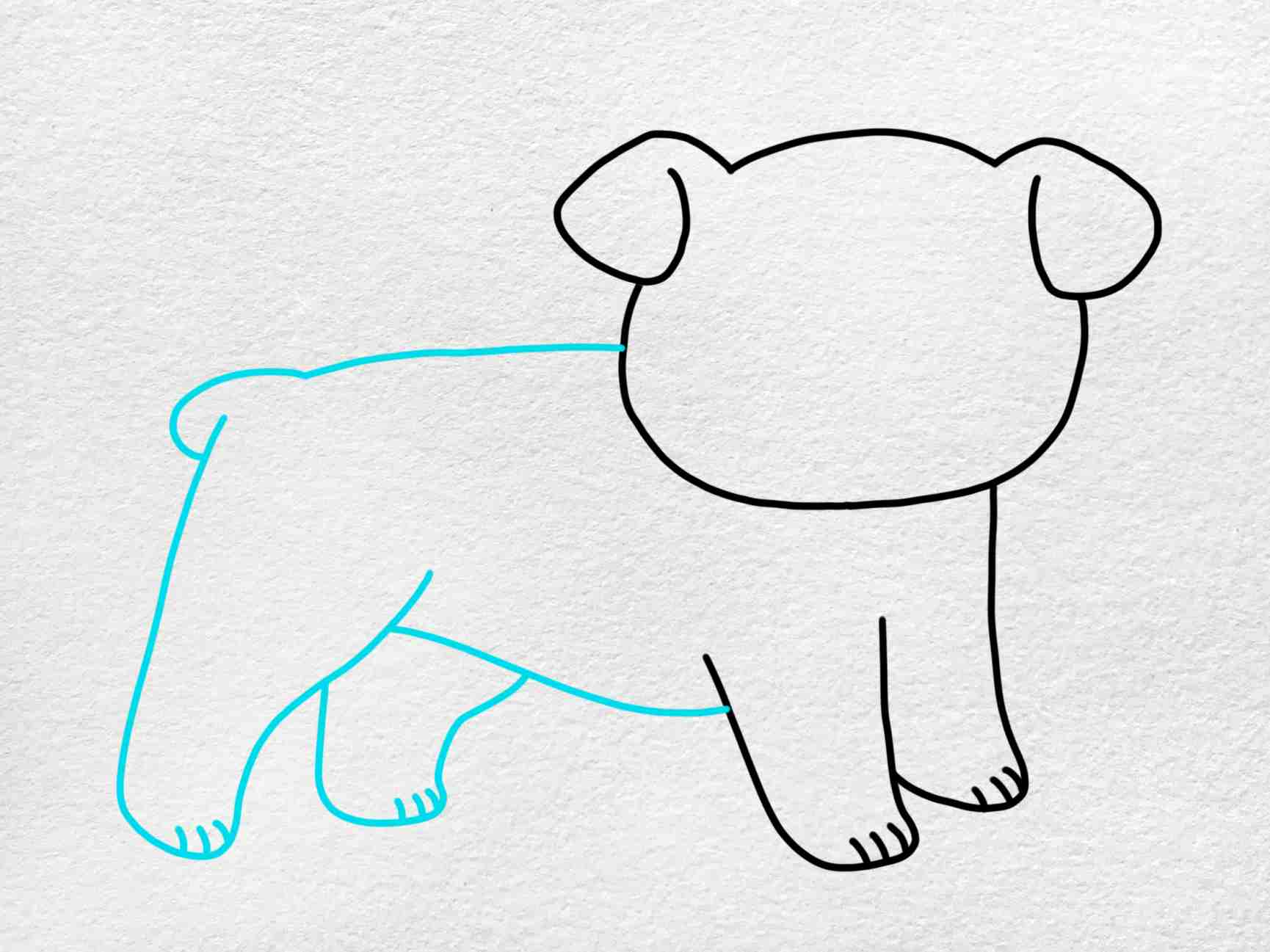 How To Draw A Bulldog: Step 4