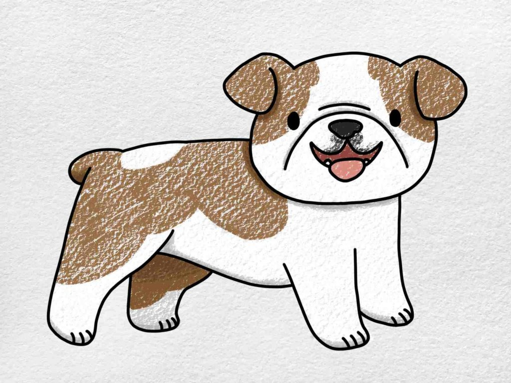 How To Draw A Bulldog: Step 6
