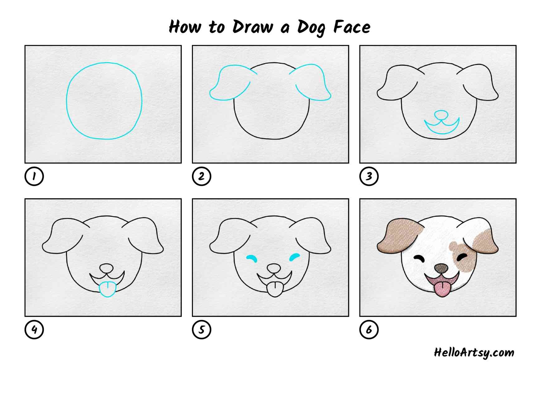 How To Draw A Dog Face: All Steps