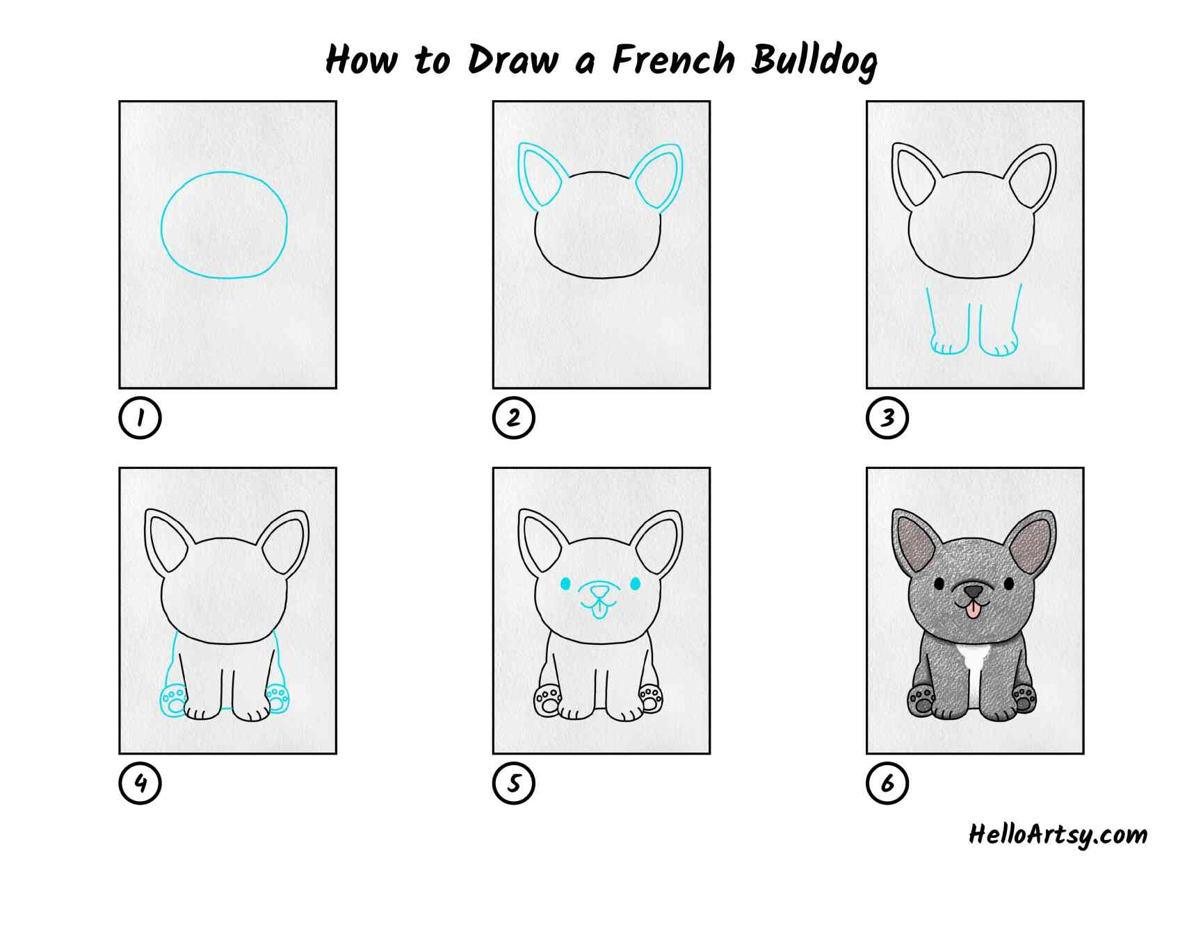 How To Draw A French Bulldog: All Steps