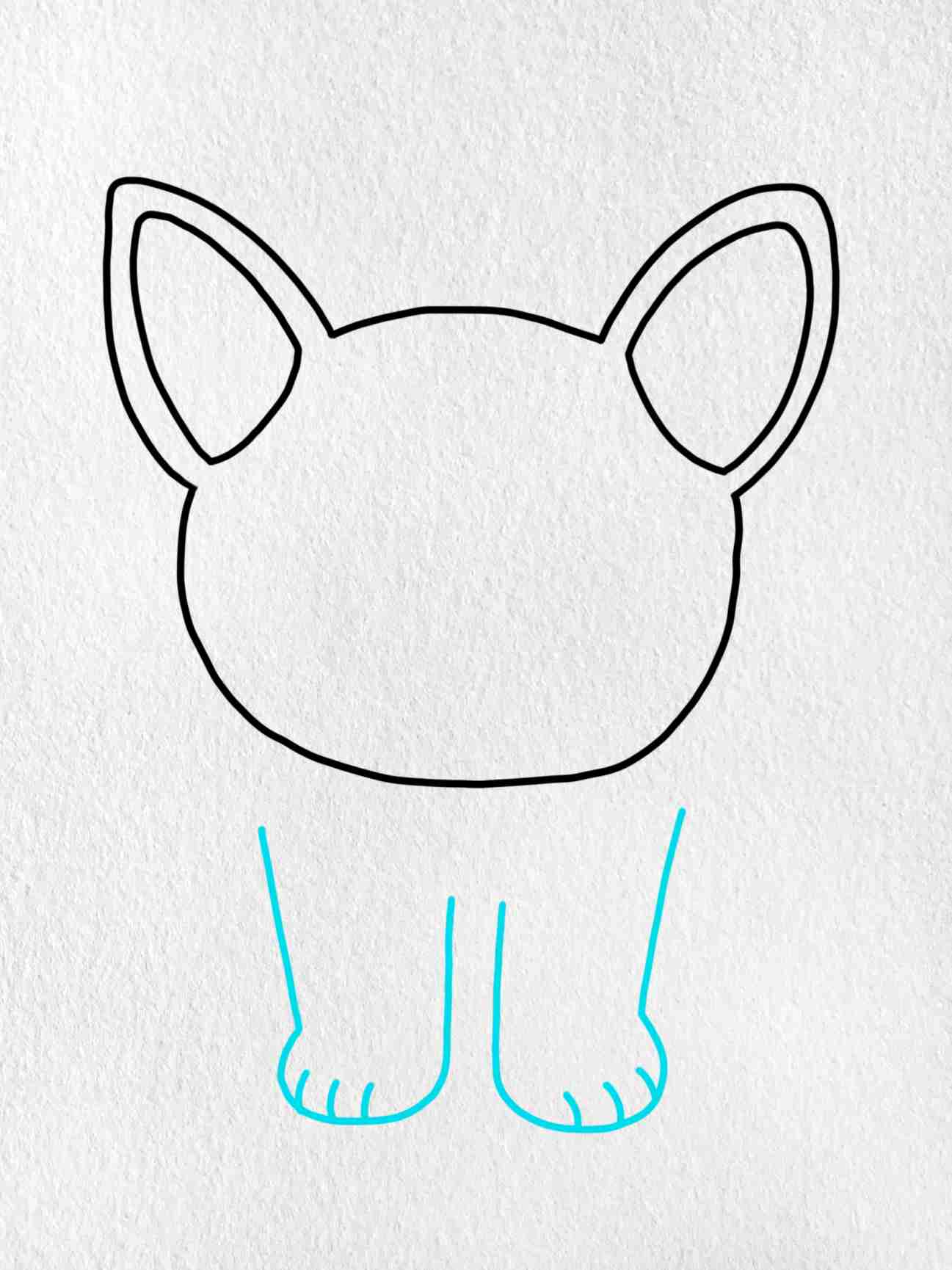 How To Draw A French Bulldog: Step 3