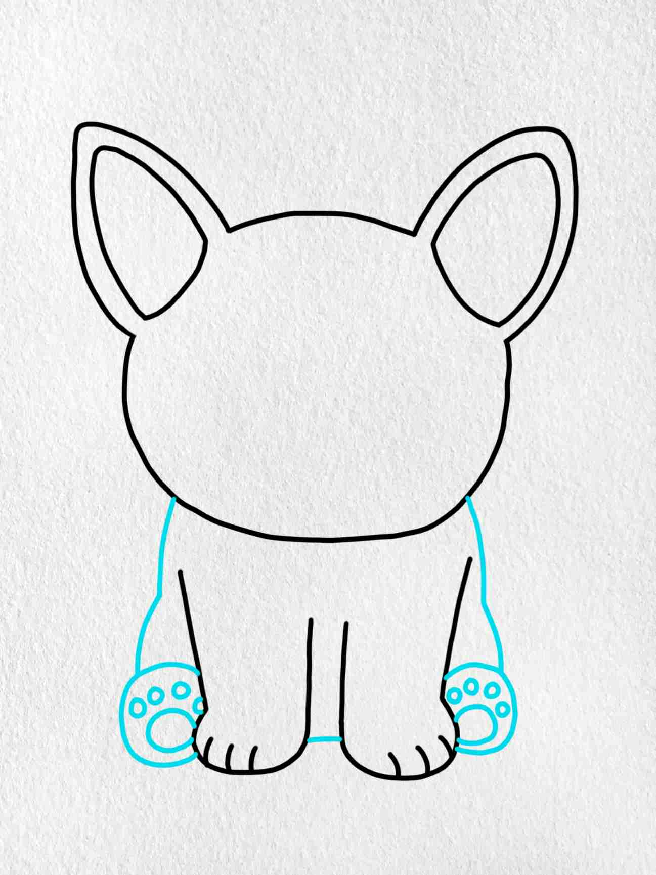How To Draw A French Bulldog: Step 4