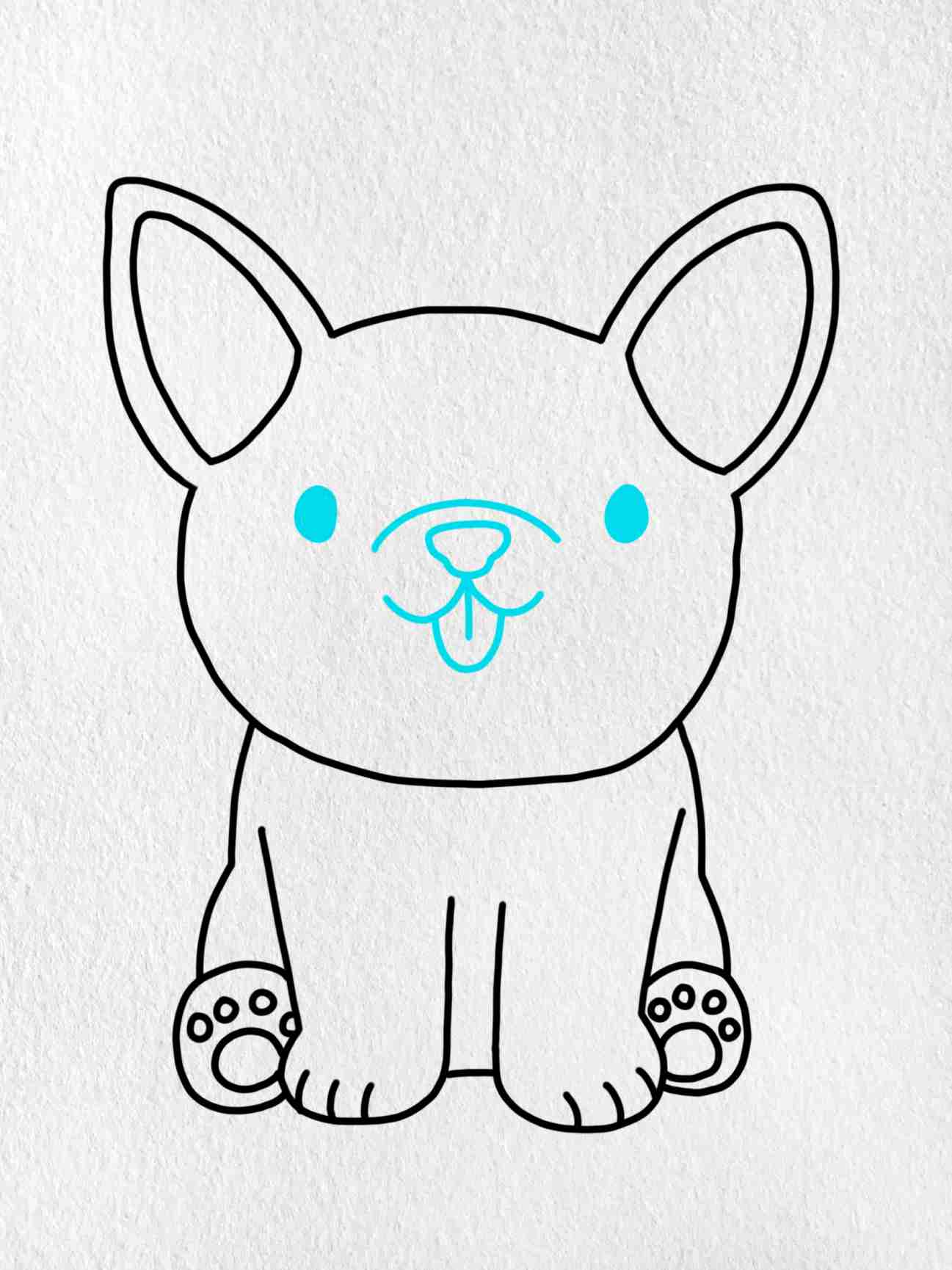How To Draw A French Bulldog: Step 5