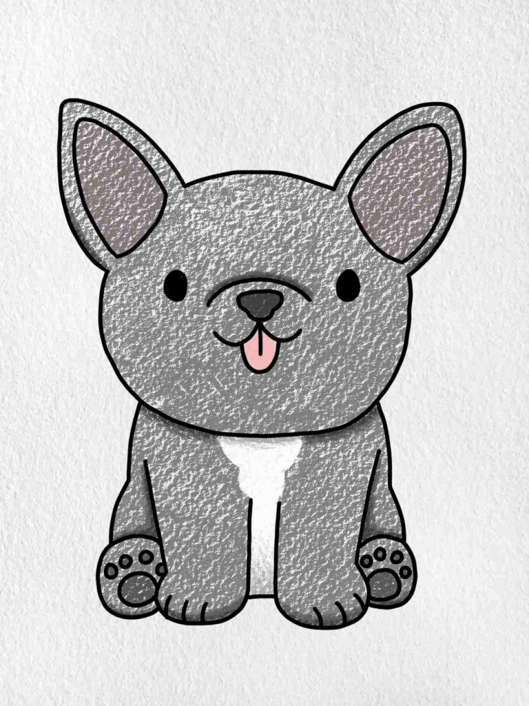 How To Draw A French Bulldog: Step 6