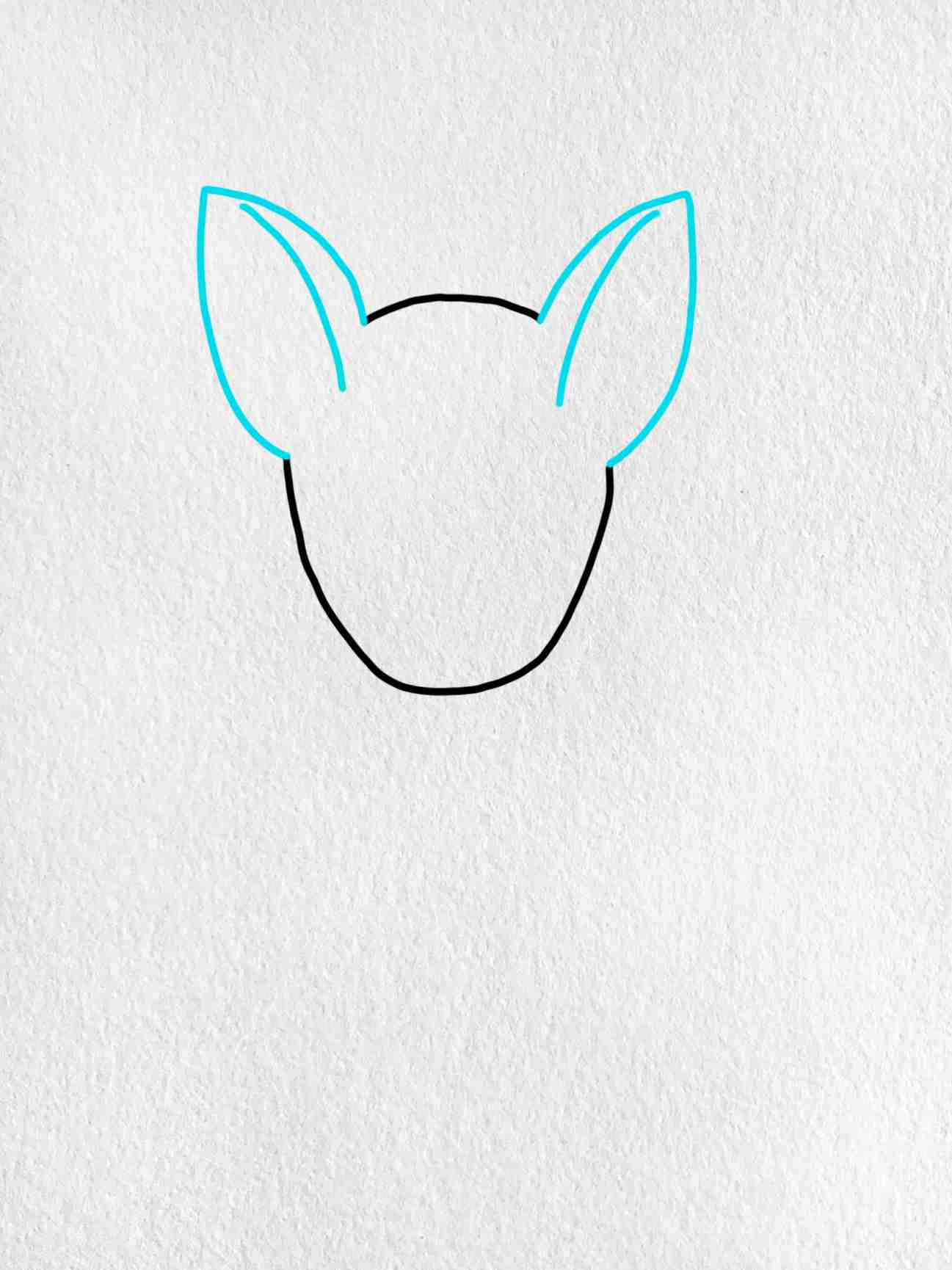 How To Draw A German Shepherd: Step 2
