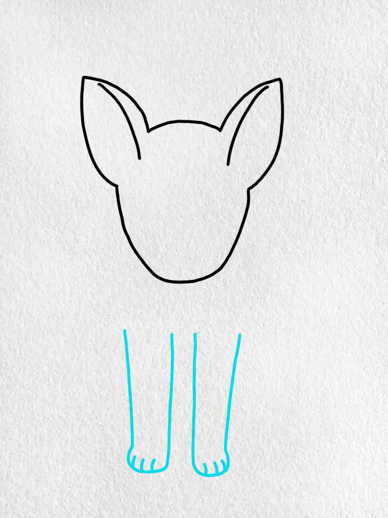How To Draw A German Shepherd: Step 3
