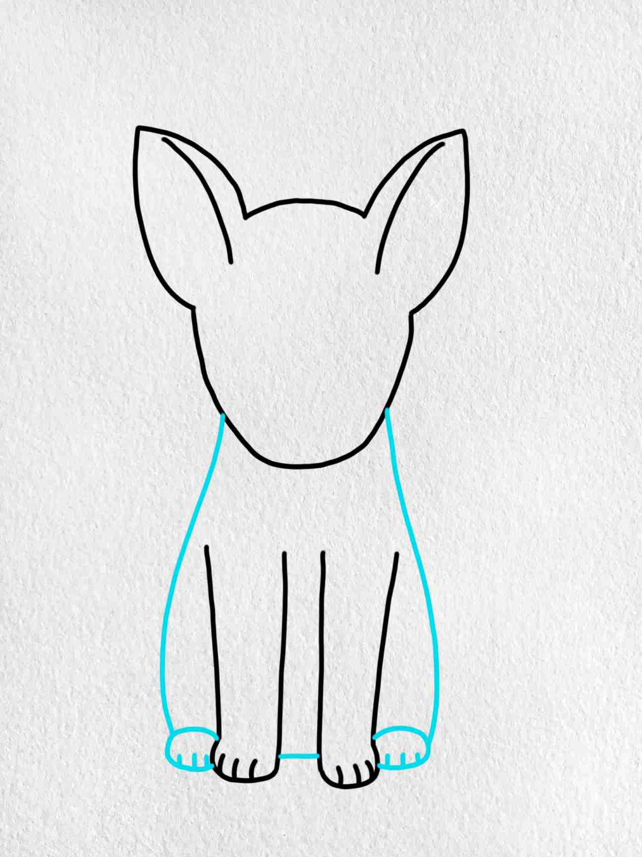 How To Draw A German Shepherd: Step 4