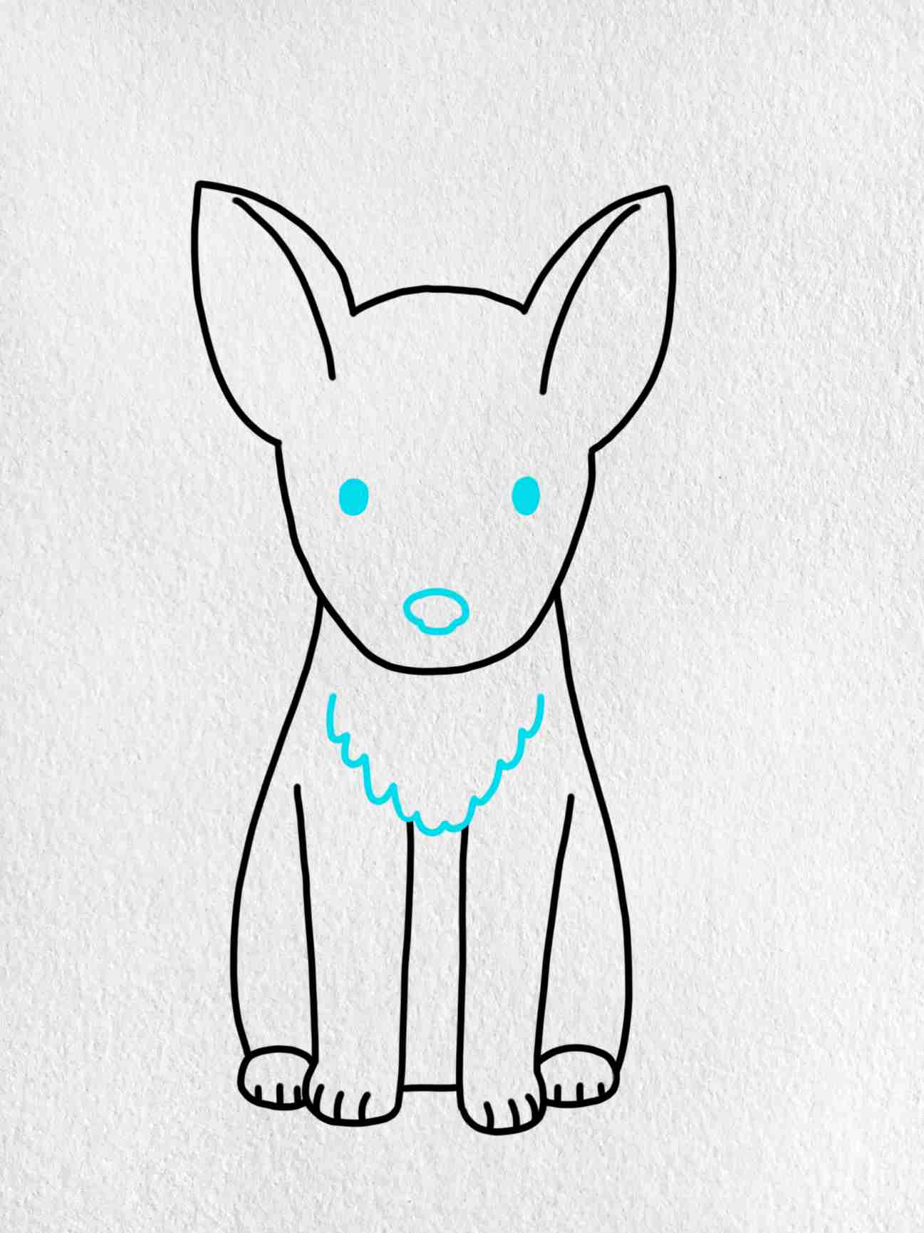 How To Draw A German Shepherd: Step 5