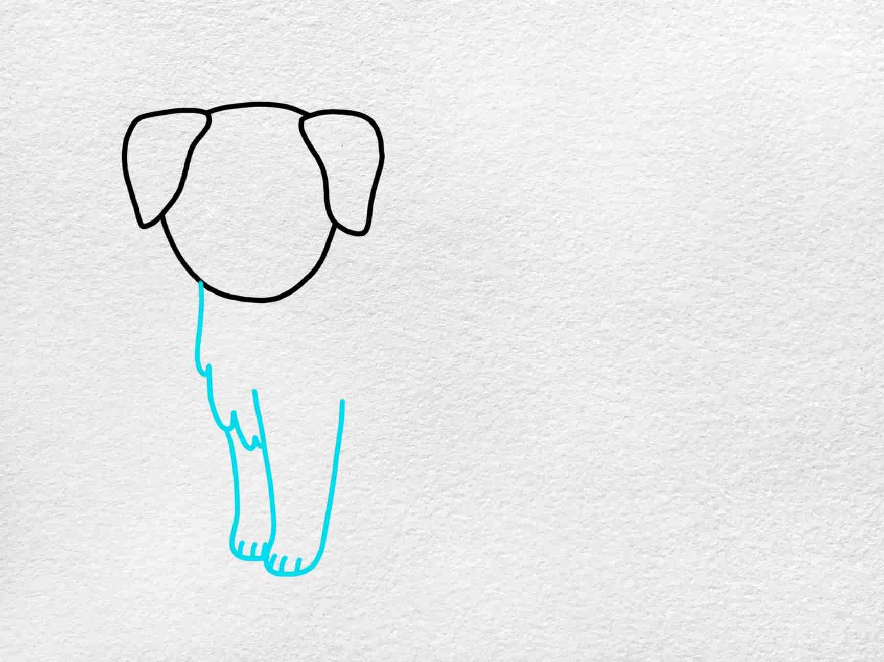 How To Draw A Golden Retriever: Step 3