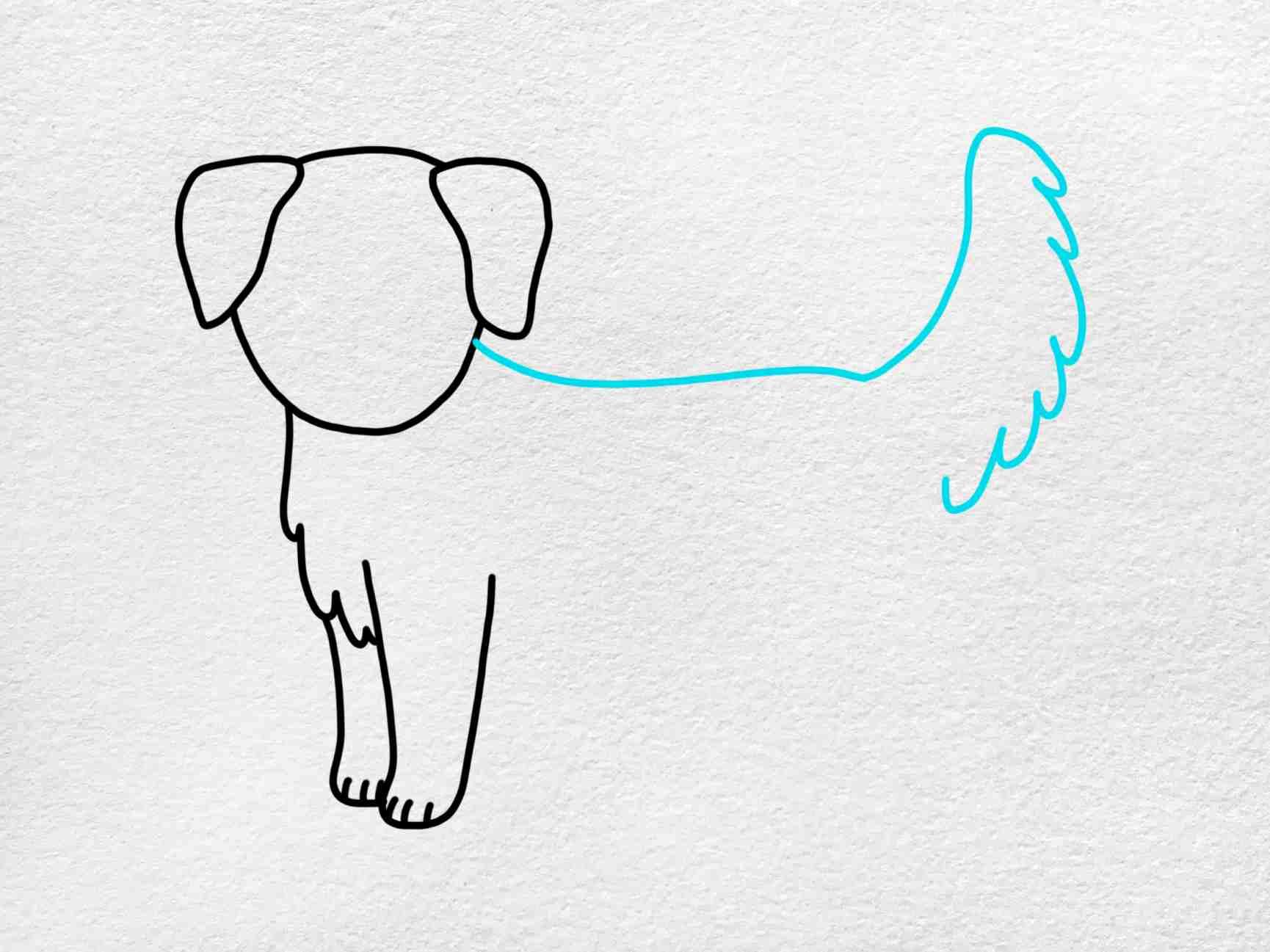 How To Draw A Golden Retriever: Step 4