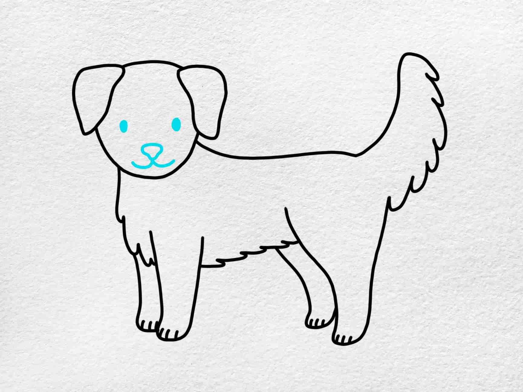 How To Draw A Golden Retriever: Step 7