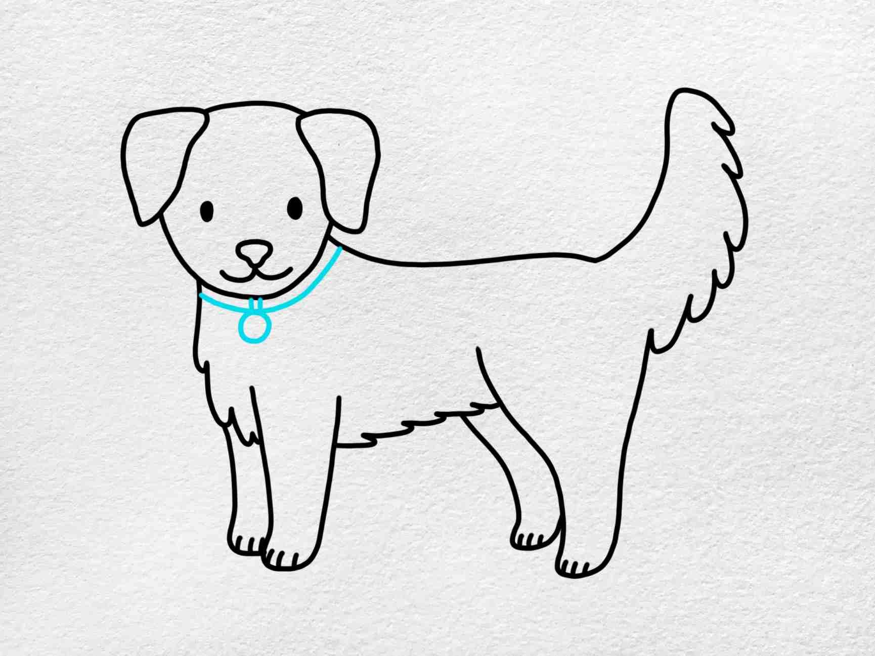 How To Draw A Golden Retriever: Step 8