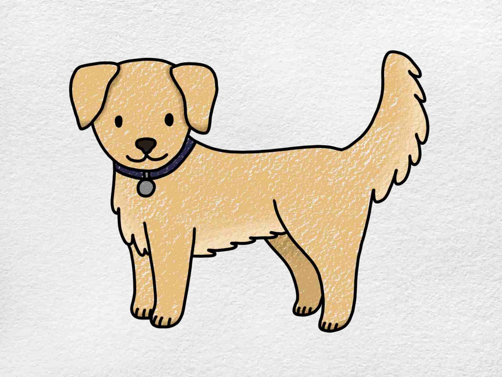 How To Draw A Golden Retriever: Step 9