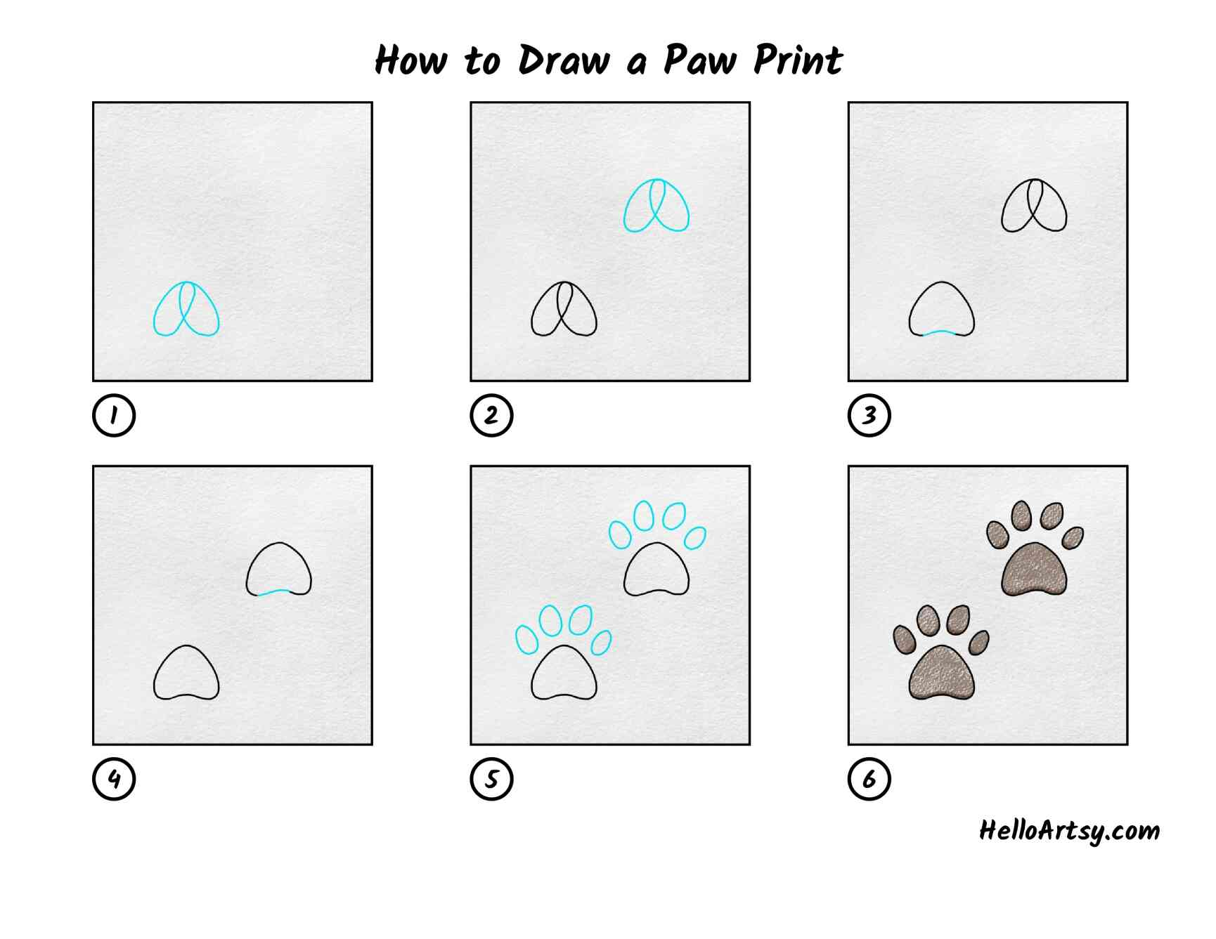 How To Draw A Paw Print: All Steps