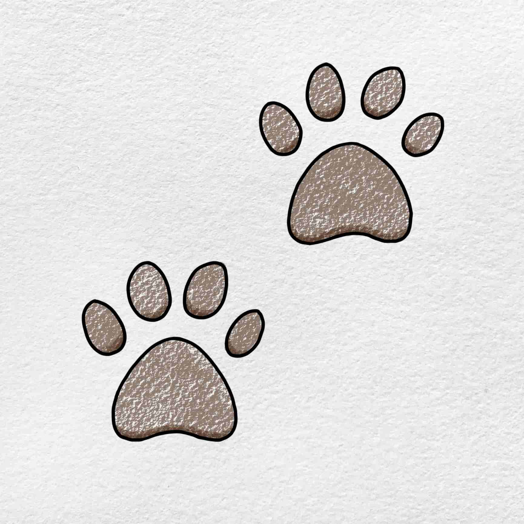 How To Draw A Paw Print: Step 6