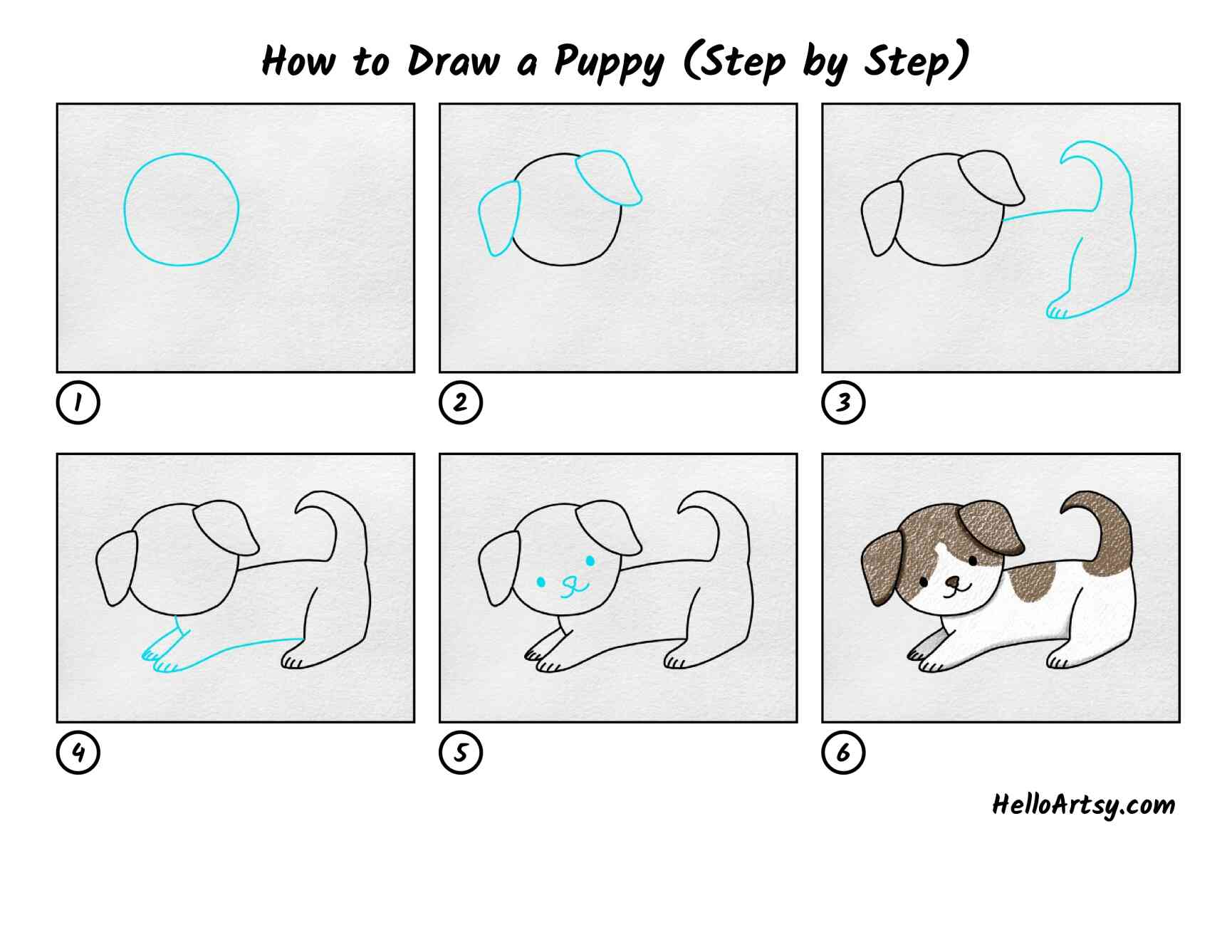 How To Draw A Puppy Step By Step: All Steps
