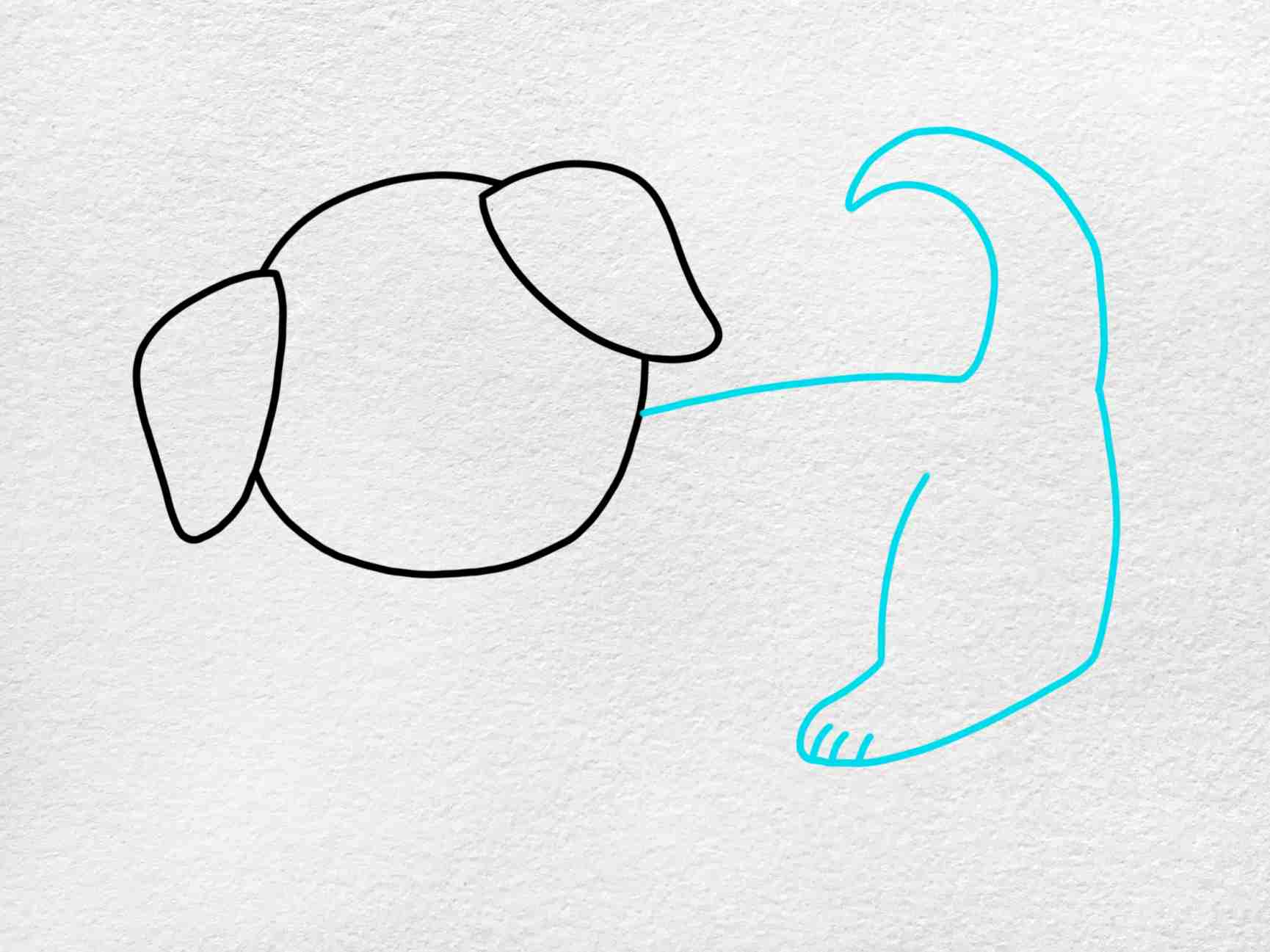 How To Draw A Puppy Step By Step: Step 3