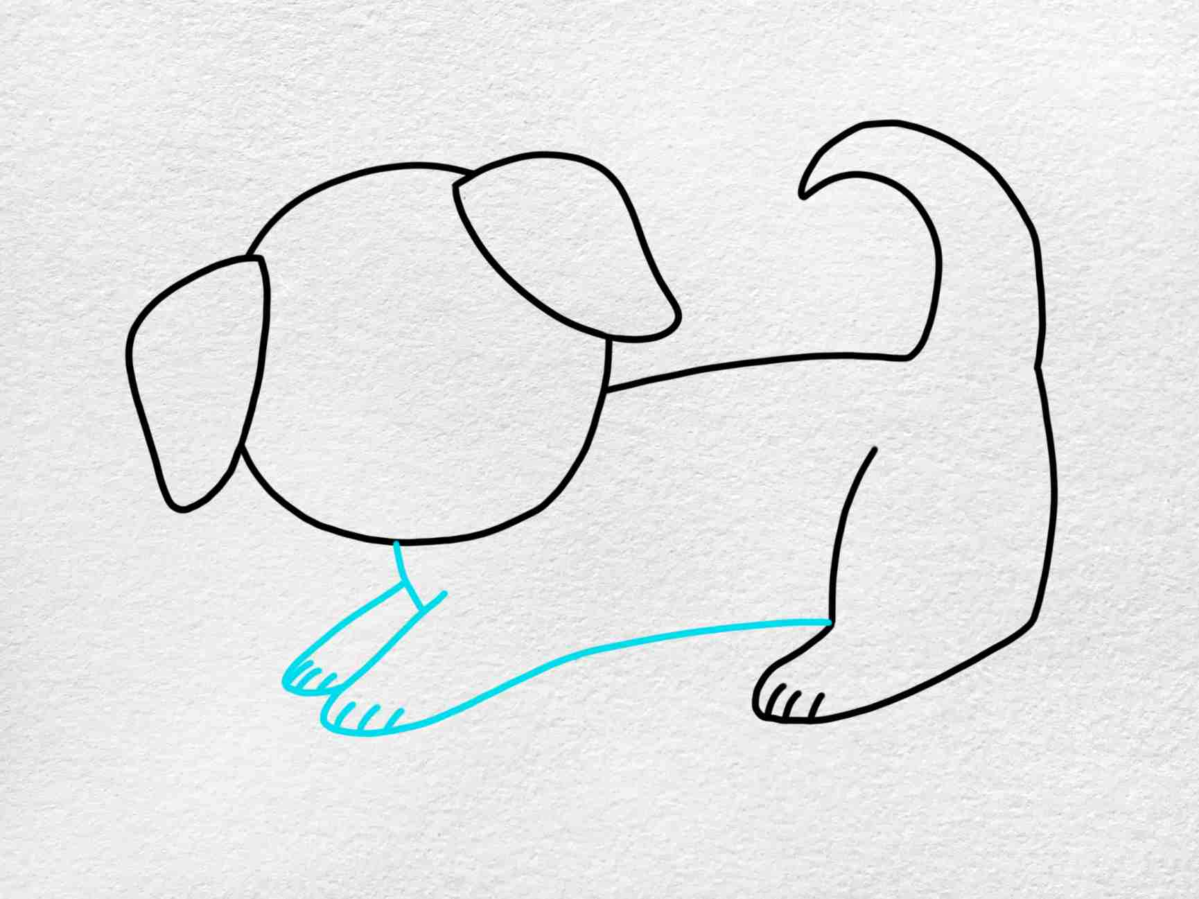 How To Draw A Puppy Step By Step: Step 4