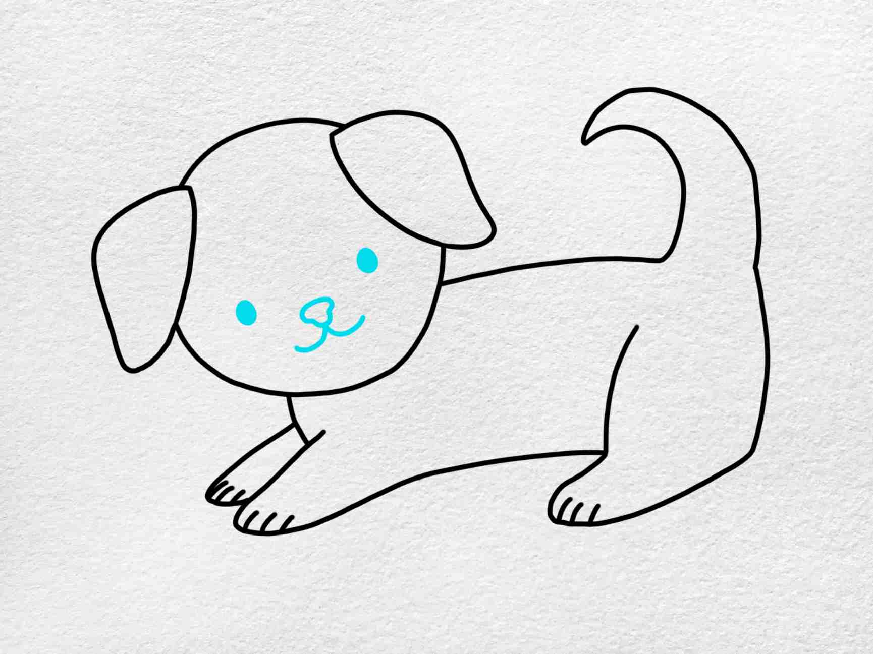 How To Draw A Puppy Step By Step: Step 5