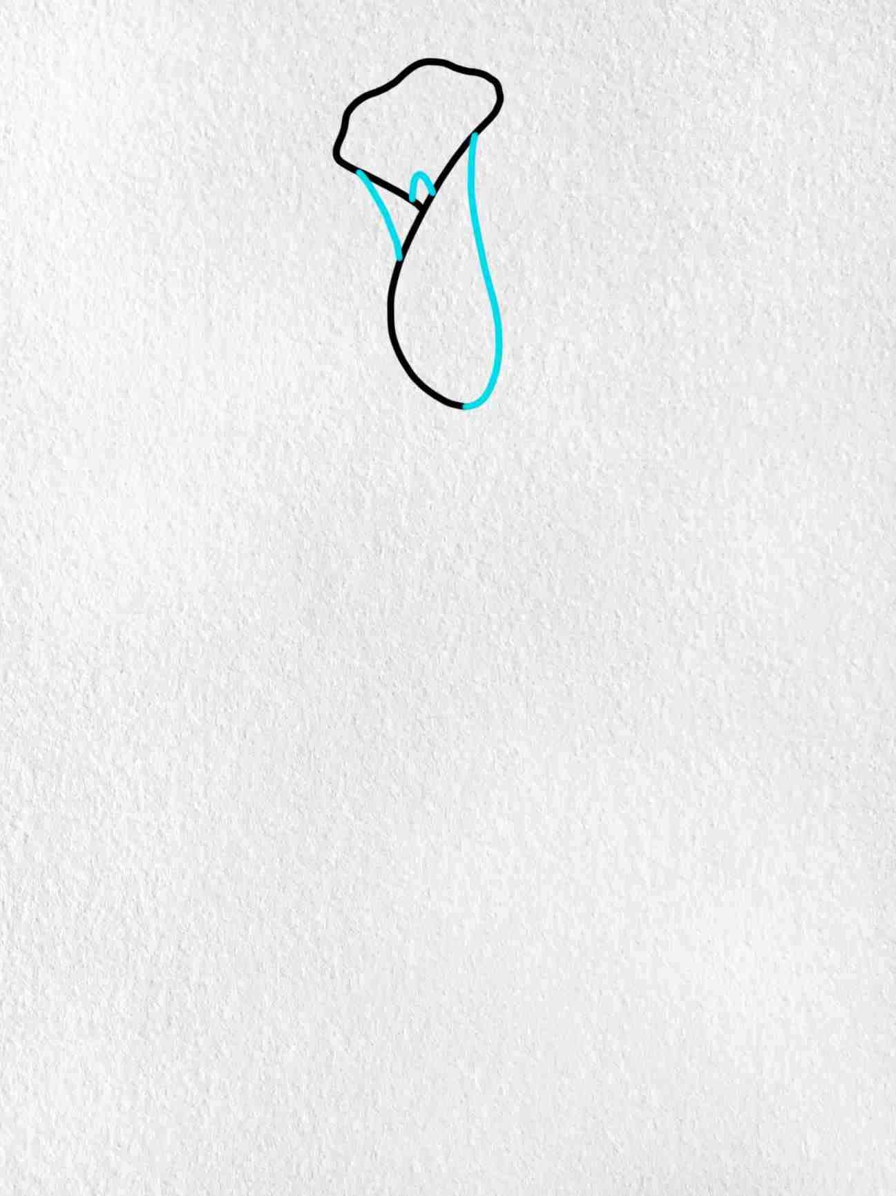 Calla Lily Drawing: Step 2