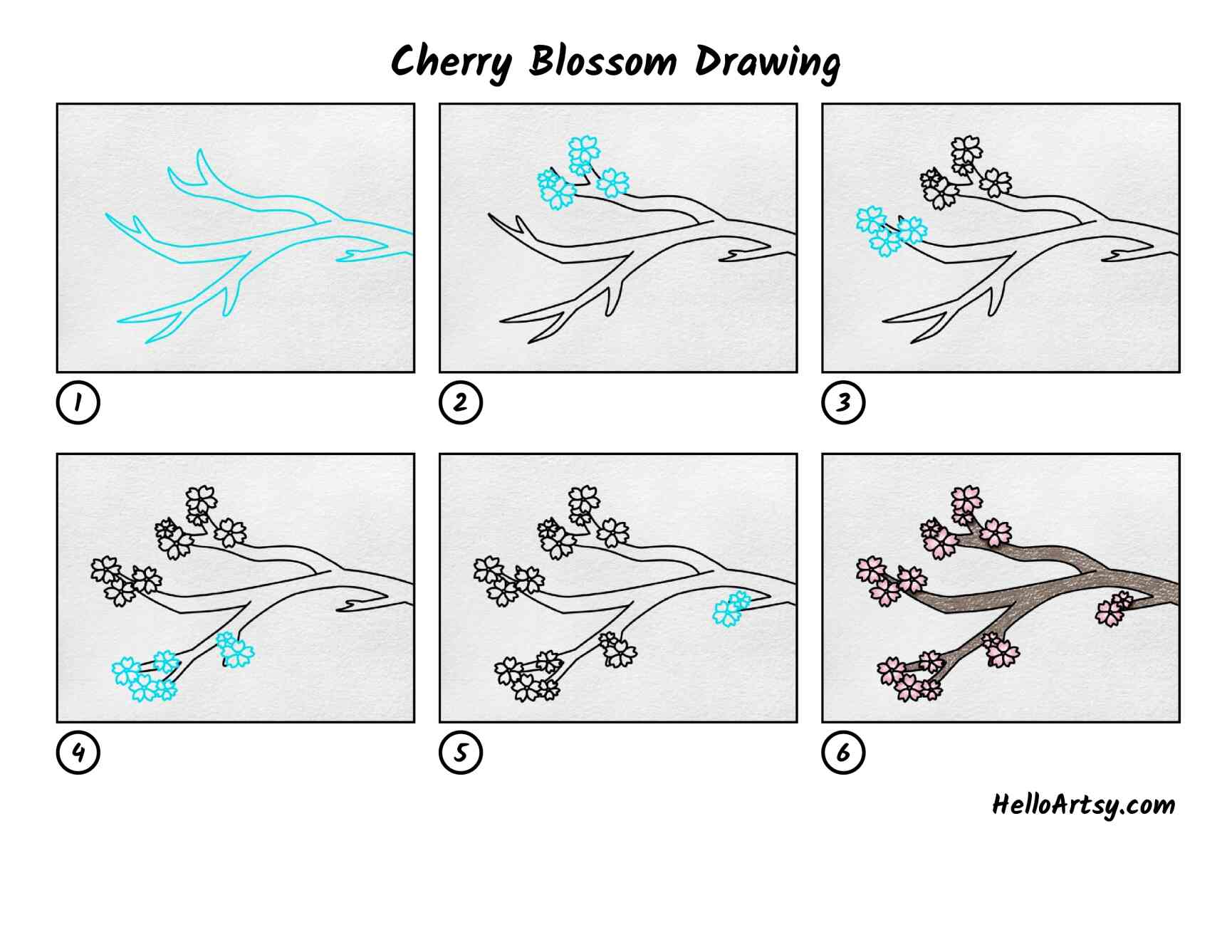 Cherry Blossom Drawing: All Steps