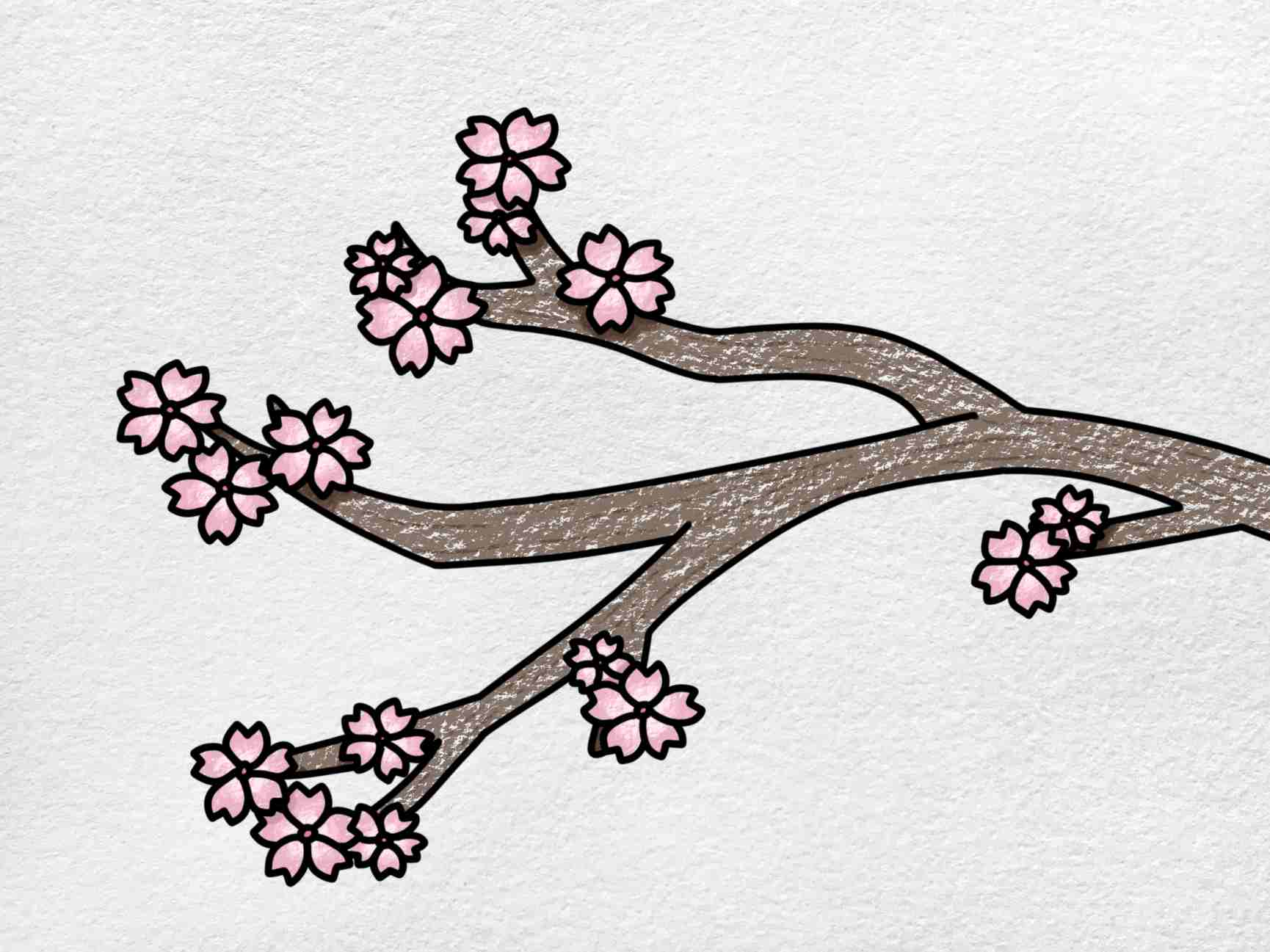 Cherry Blossom Drawing: Step 6