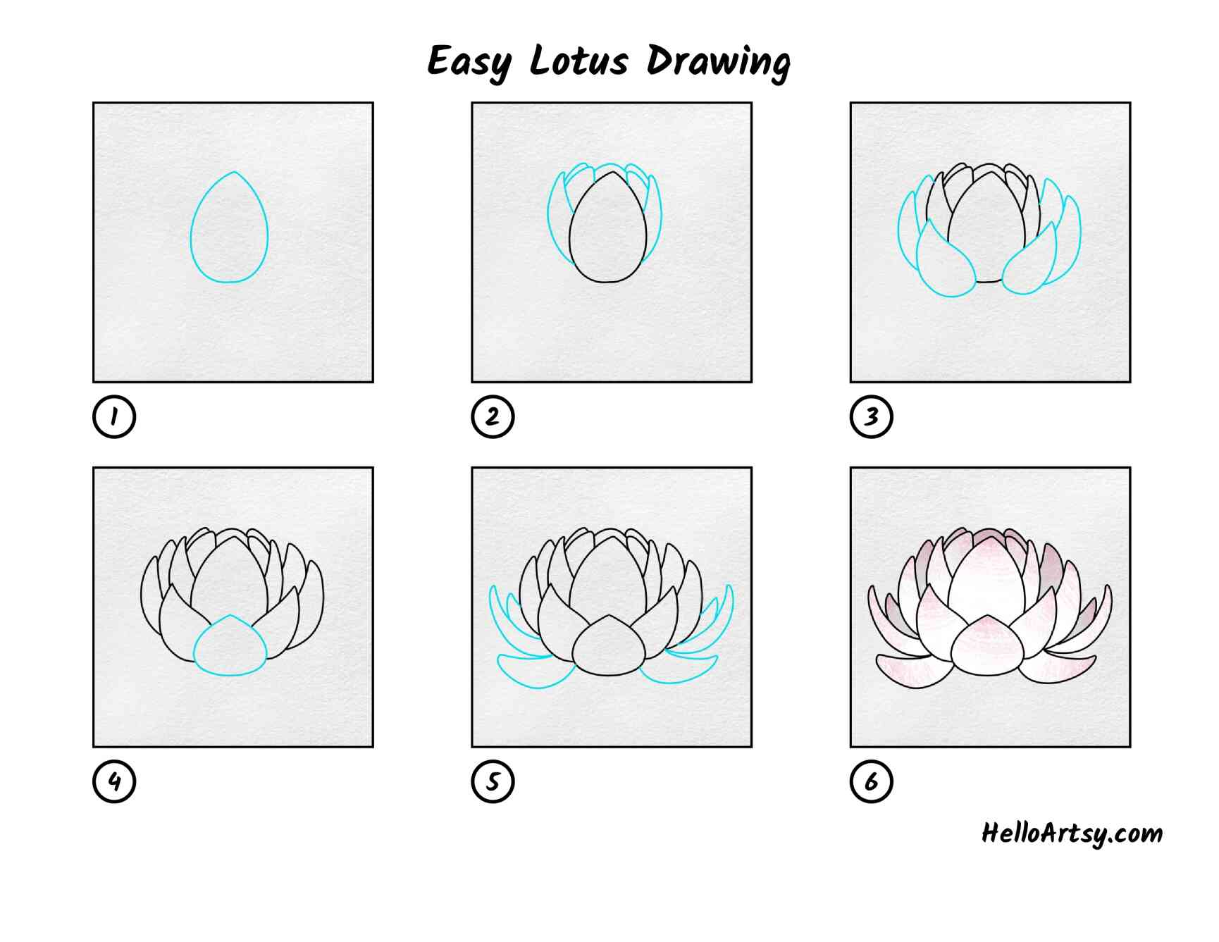 Easy Lotus Drawing: All Steps