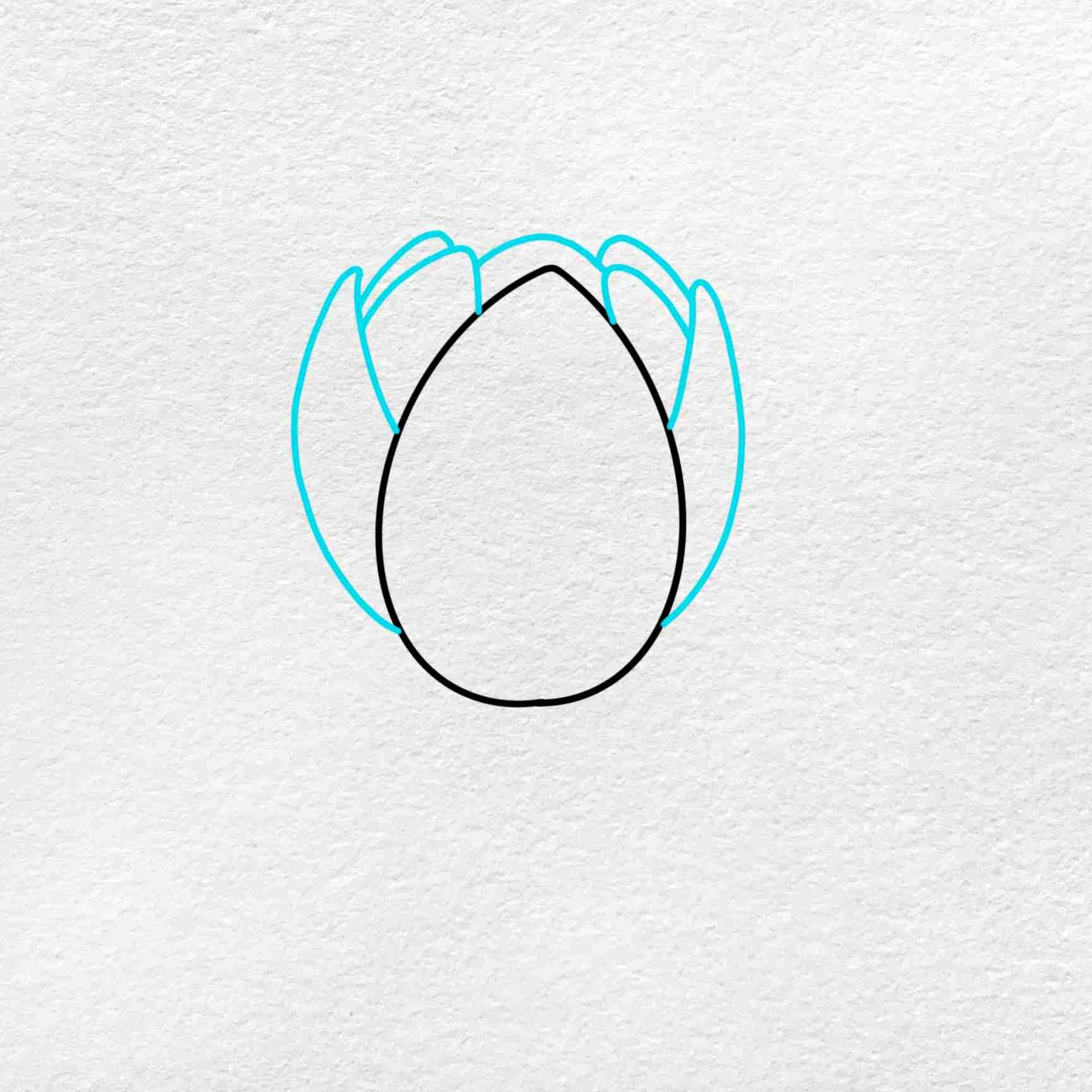 Easy Lotus Drawing: Step 2