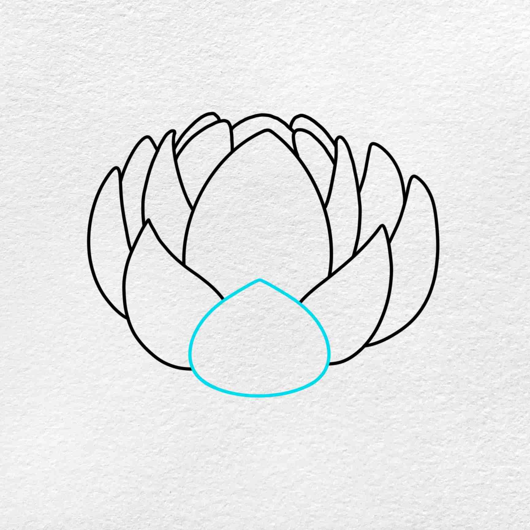 Easy Lotus Drawing: Step 4