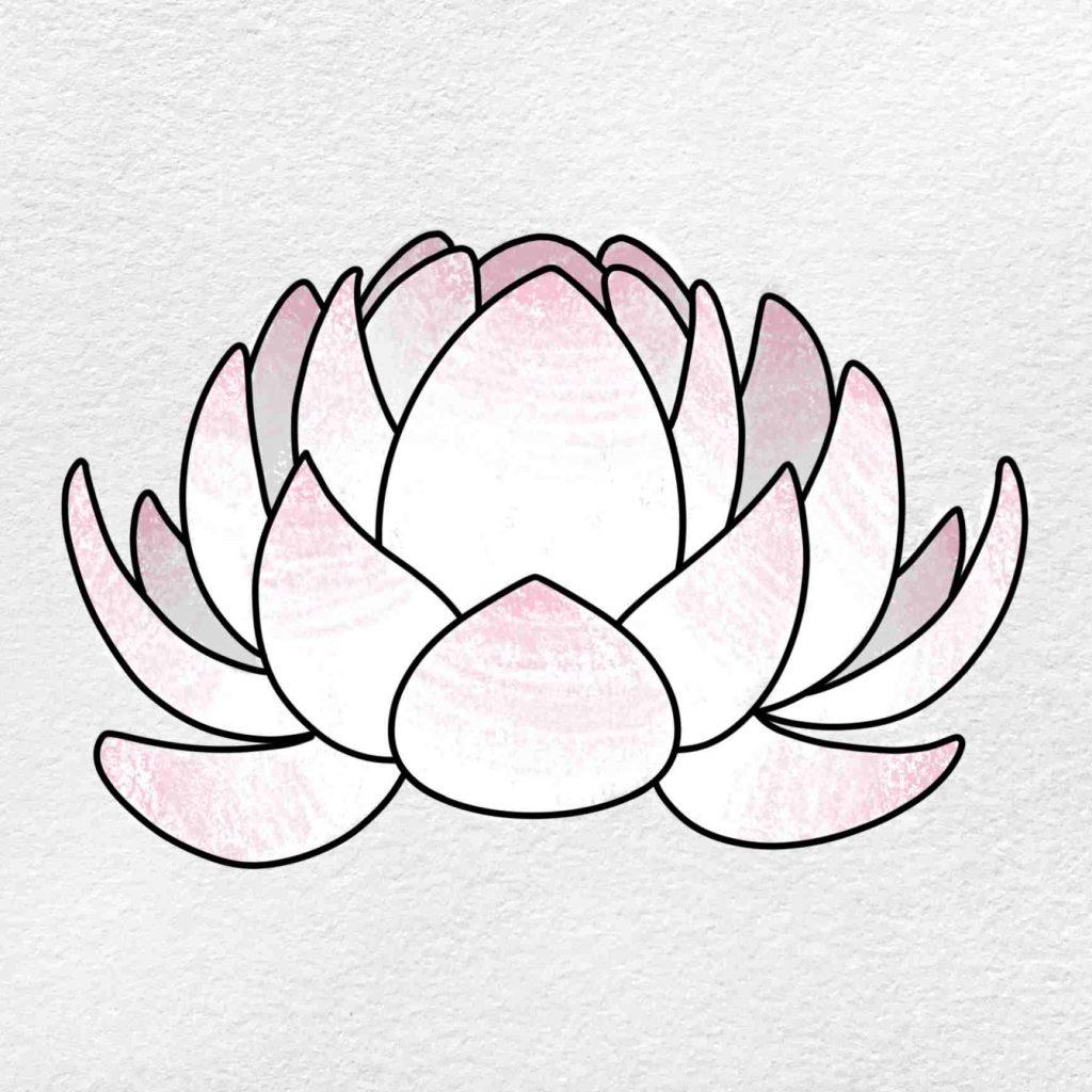 Easy Lotus Drawing: Step 6
