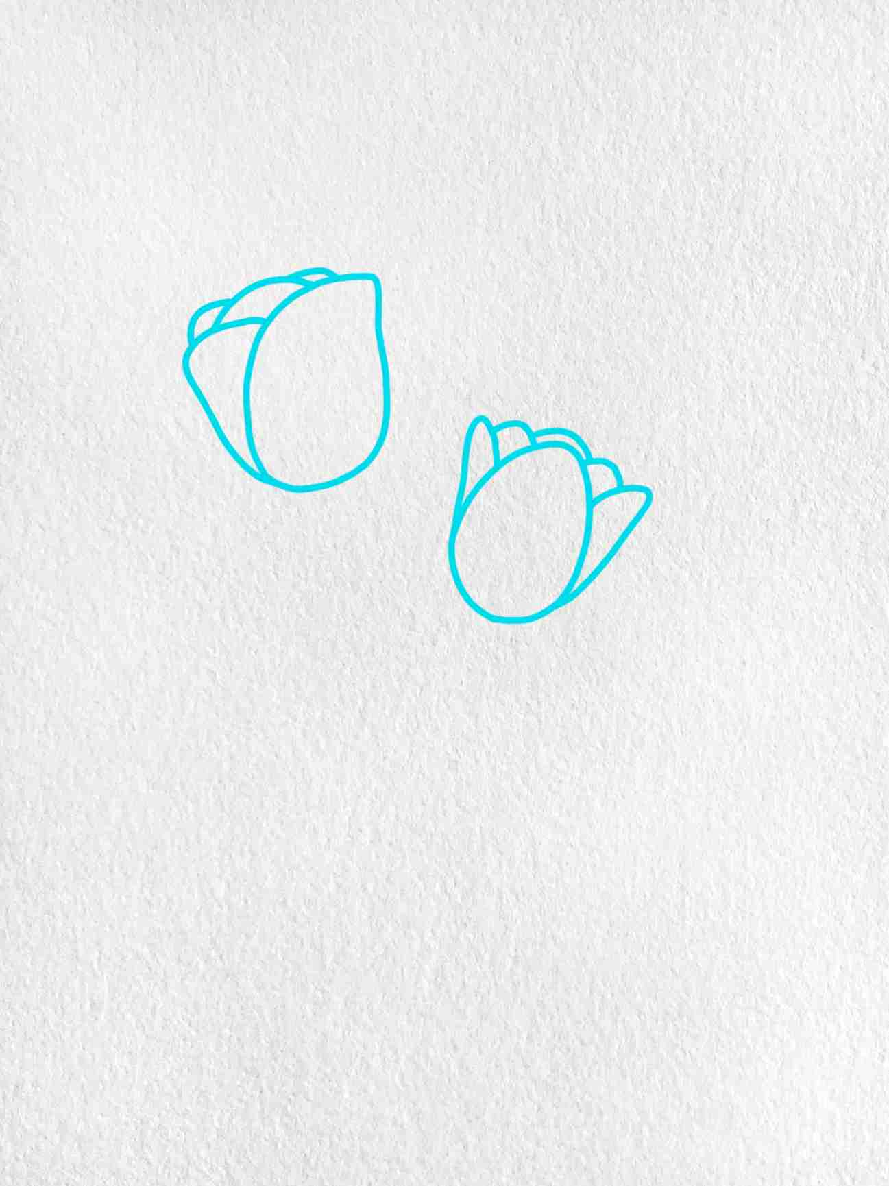 Easy To Draw Flowers: Step 1