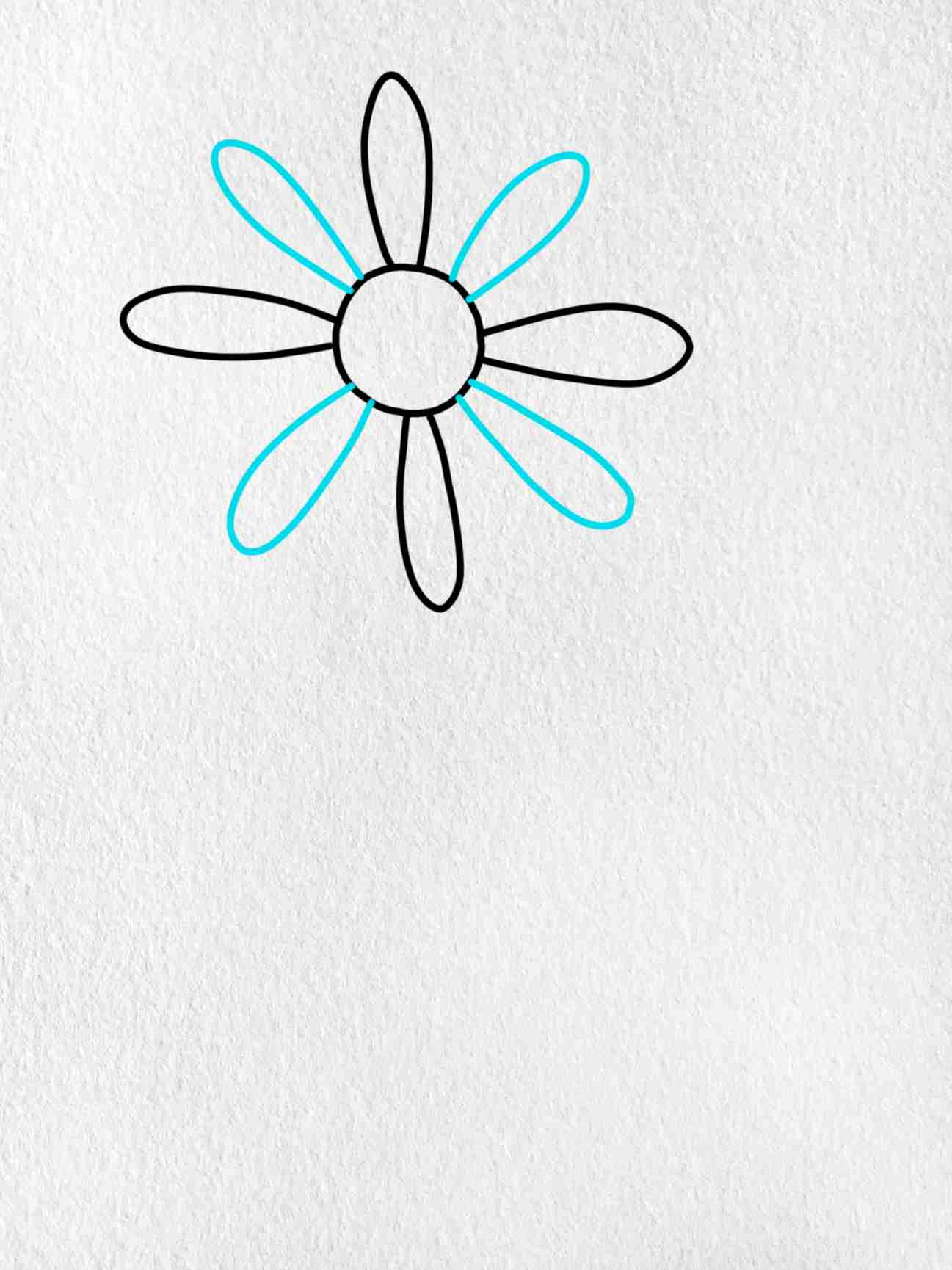How To Draw A Daisy Flower: Step 2