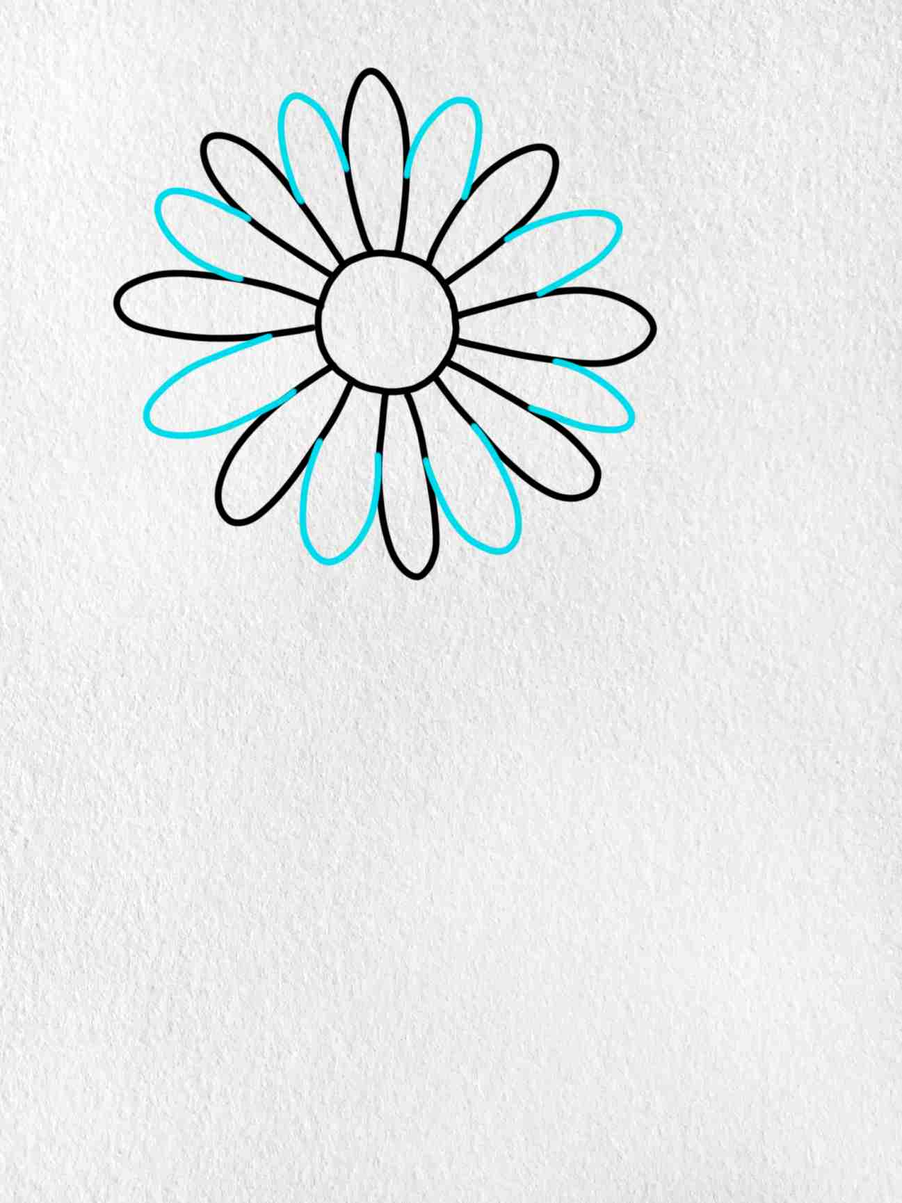 How To Draw A Daisy Flower: Step 3