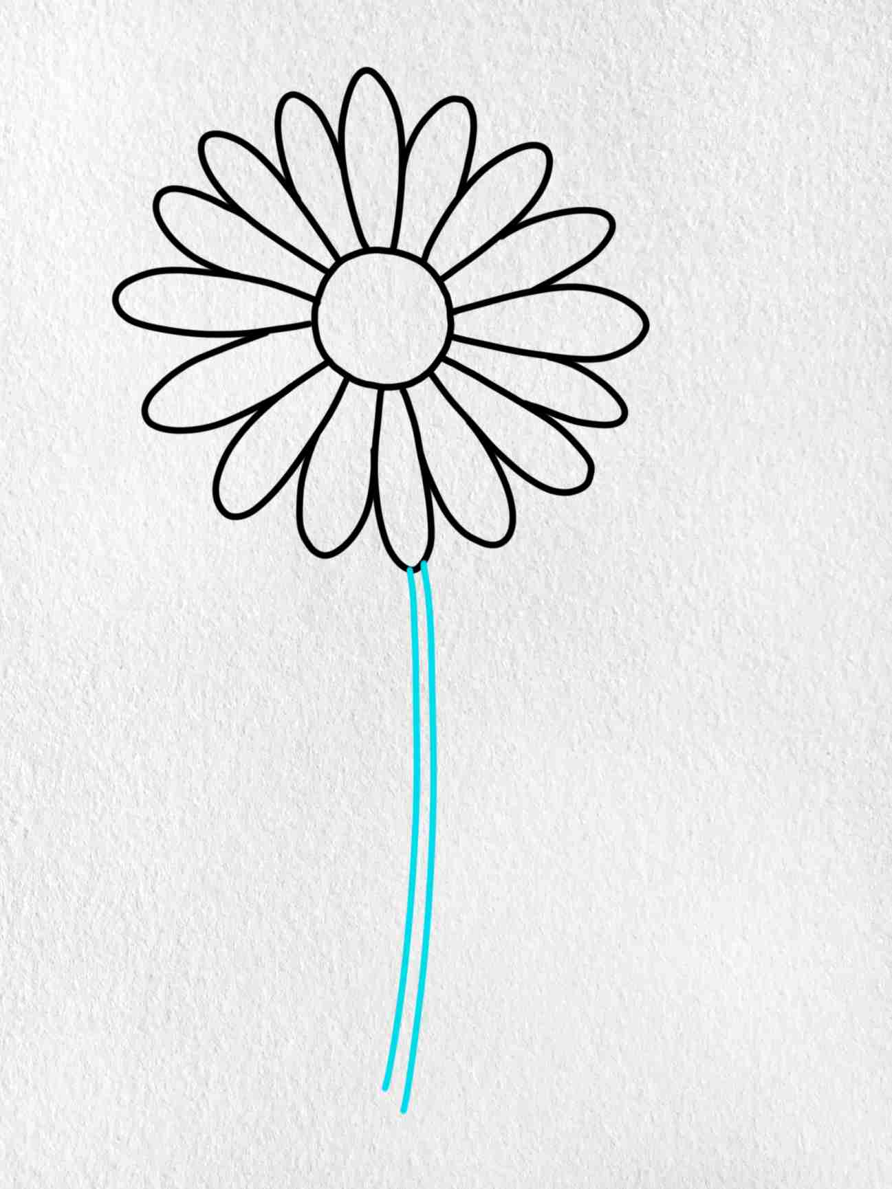 How To Draw A Daisy Flower: Step 4
