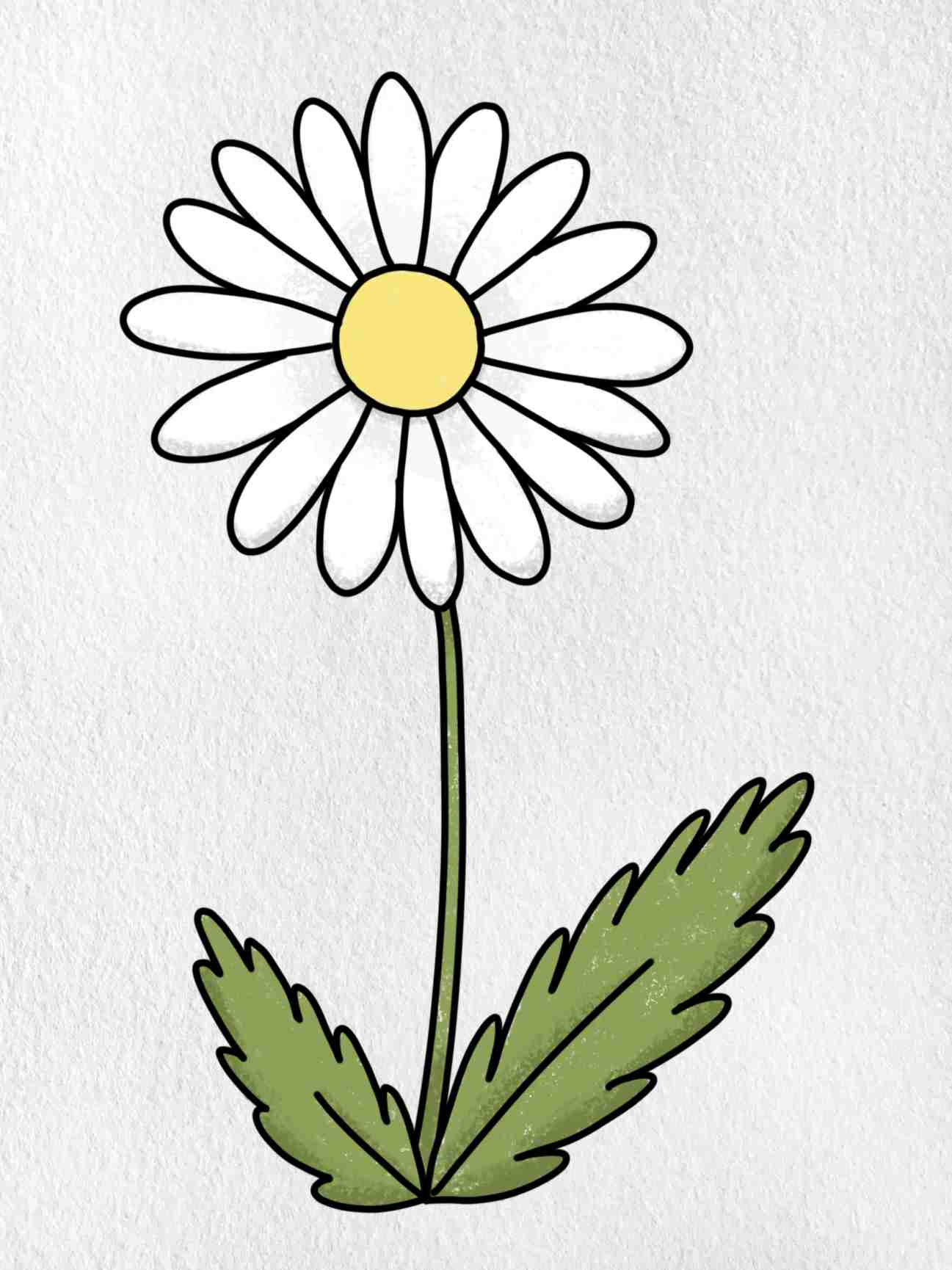 How To Draw A Daisy Flower: Step 6