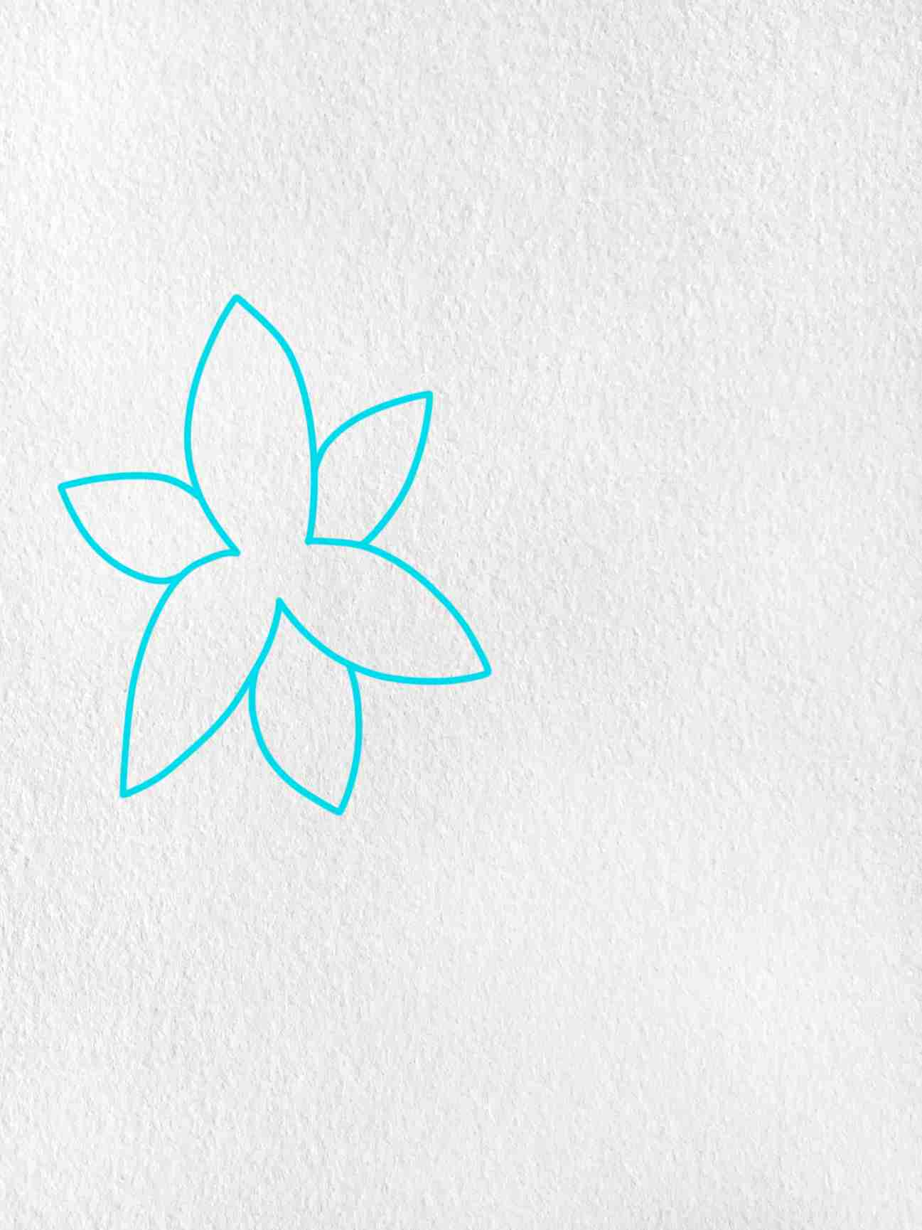How To Draw A Lily: Step 1
