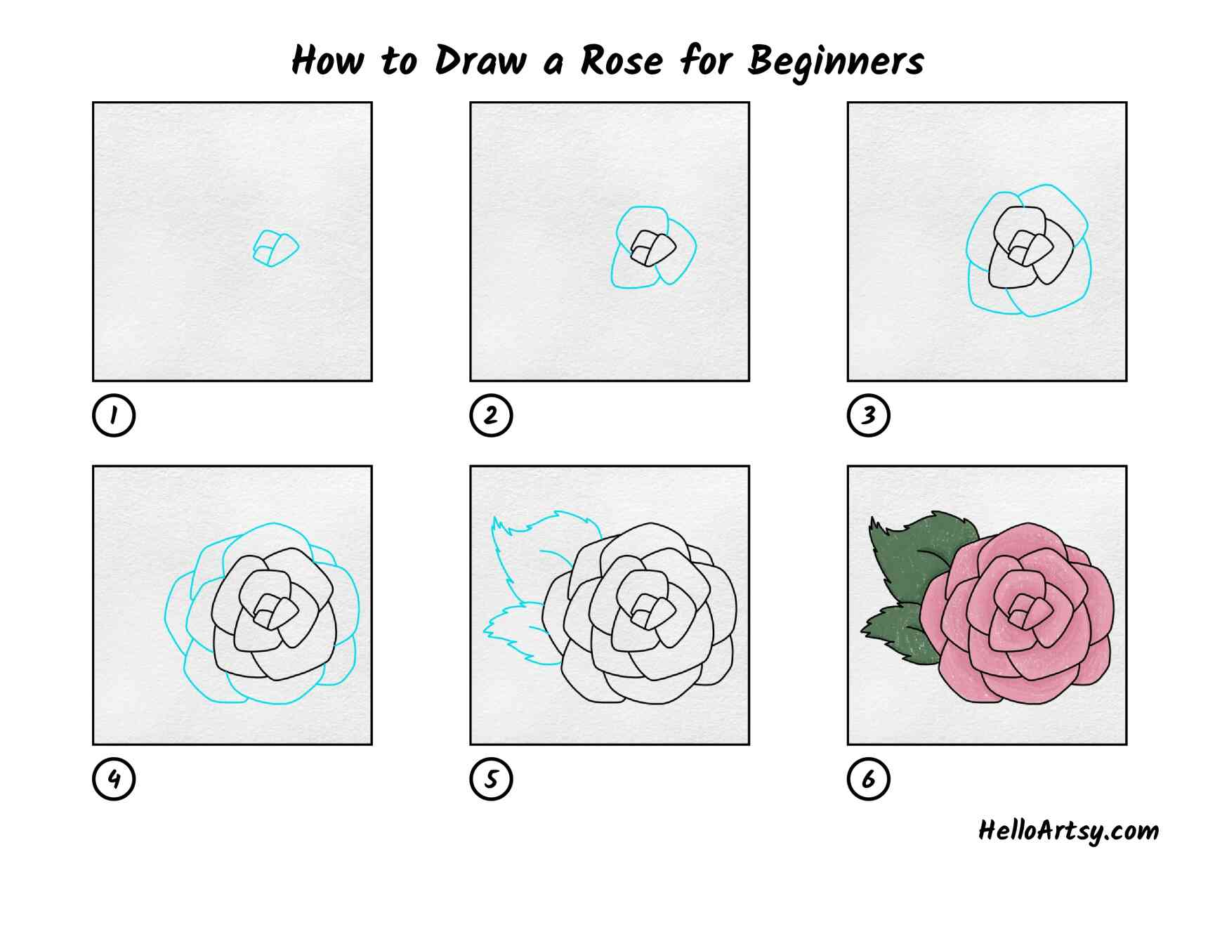 How To Draw A Rose For Beginners: All Steps