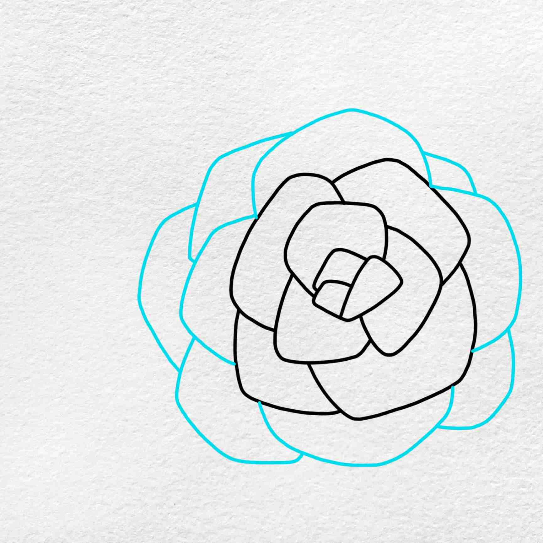 How To Draw A Rose For Beginners: Step 4