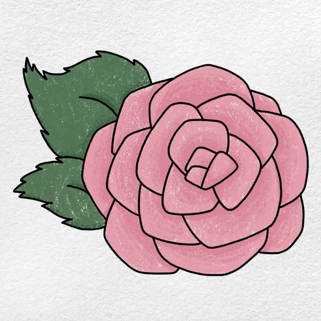 How To Draw A Rose For Beginners: Step 6